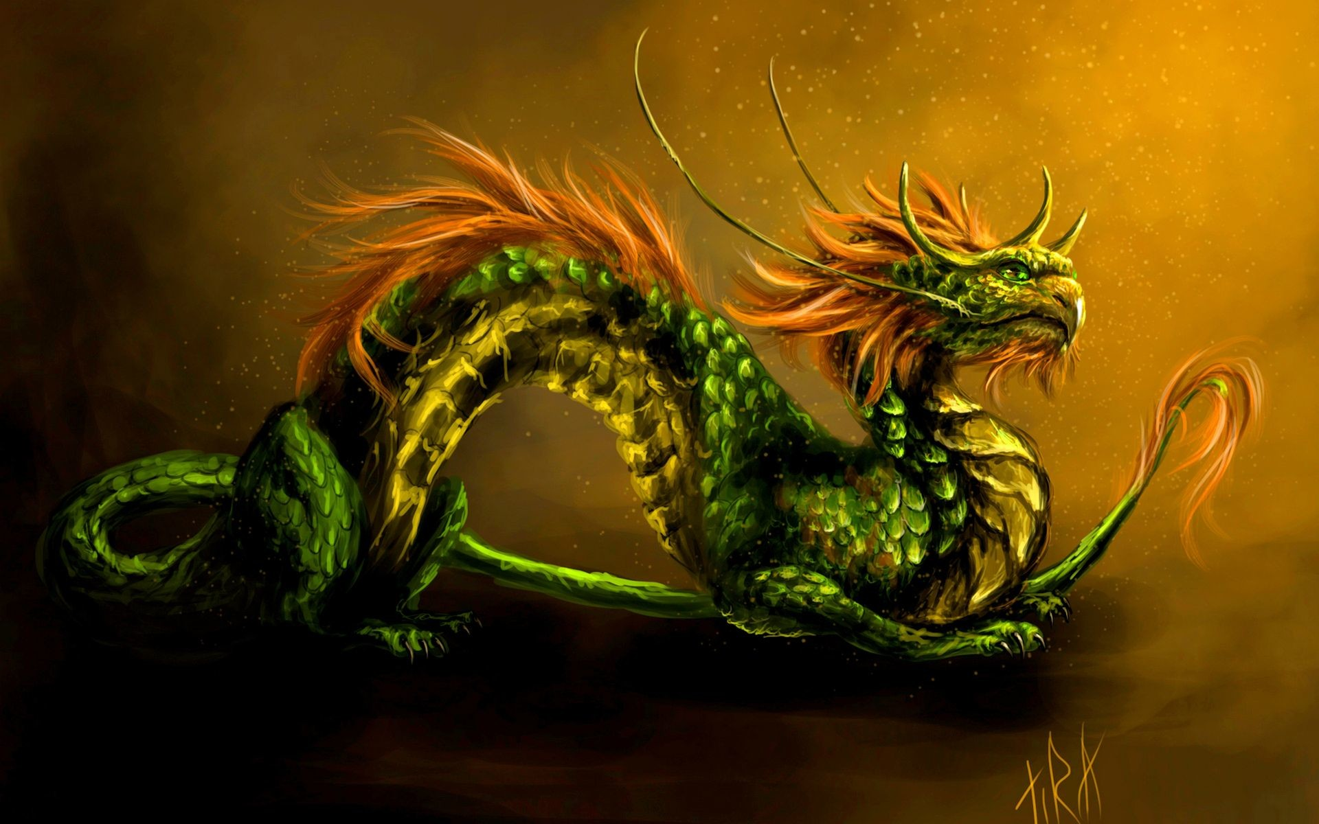 Cool 3d dragon wallpapers 55 images - Dragon wallpaper hd for pc ...