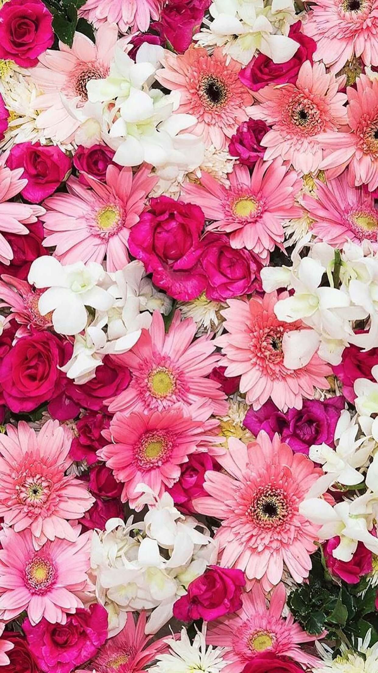 Cute Pink Flowers Wallpaper 62 Images