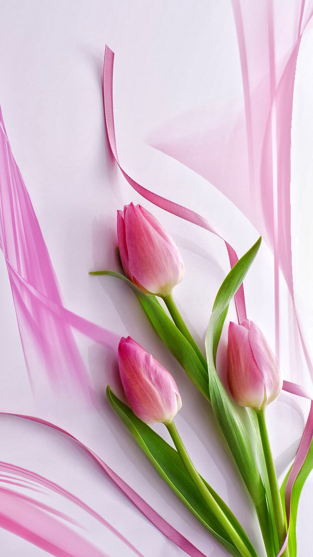 Pink Tulips Wallpaper (68+ images)