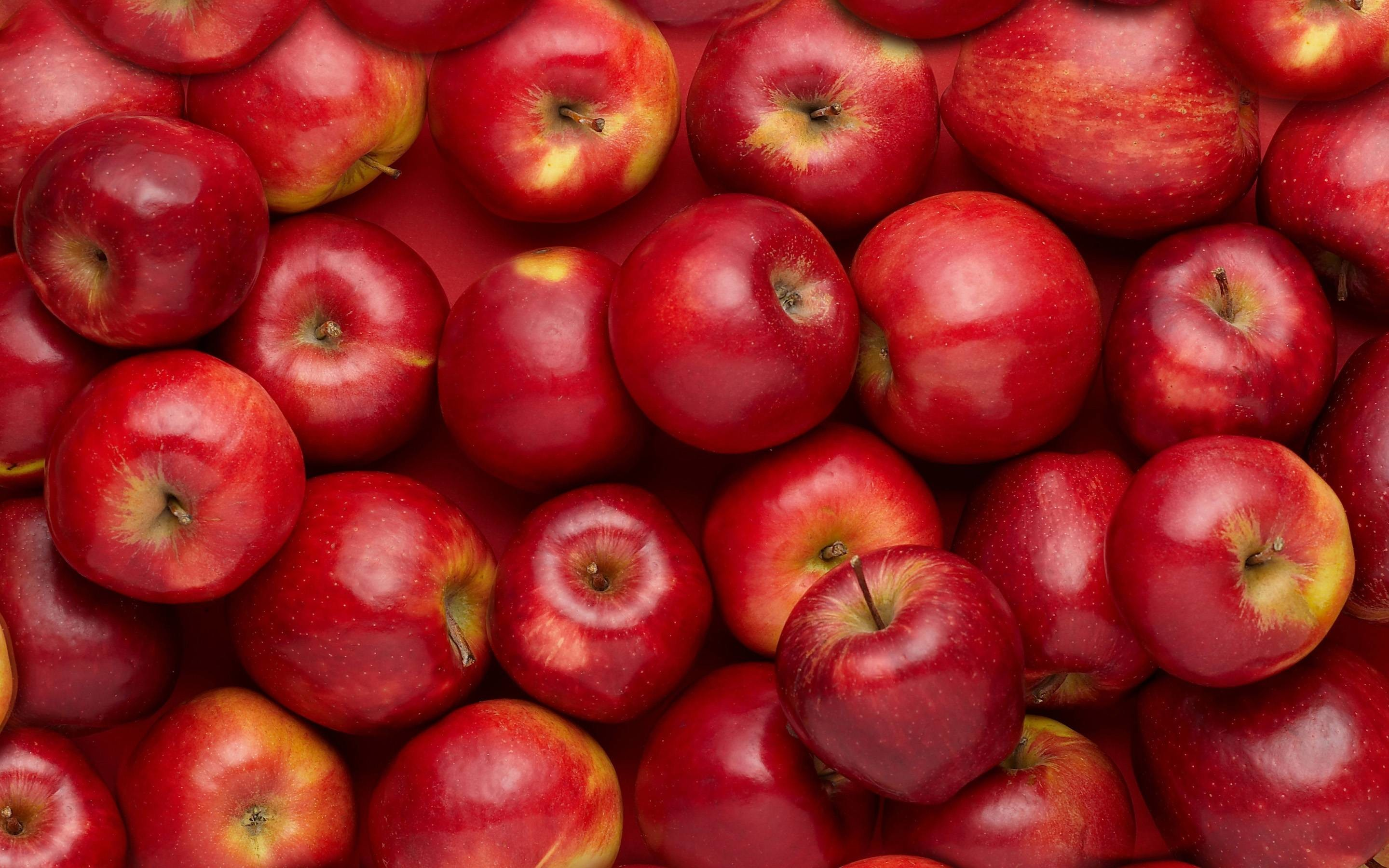 Red Apple Wallpapers - Wallpaper Cave |Red Apples Wallpaper