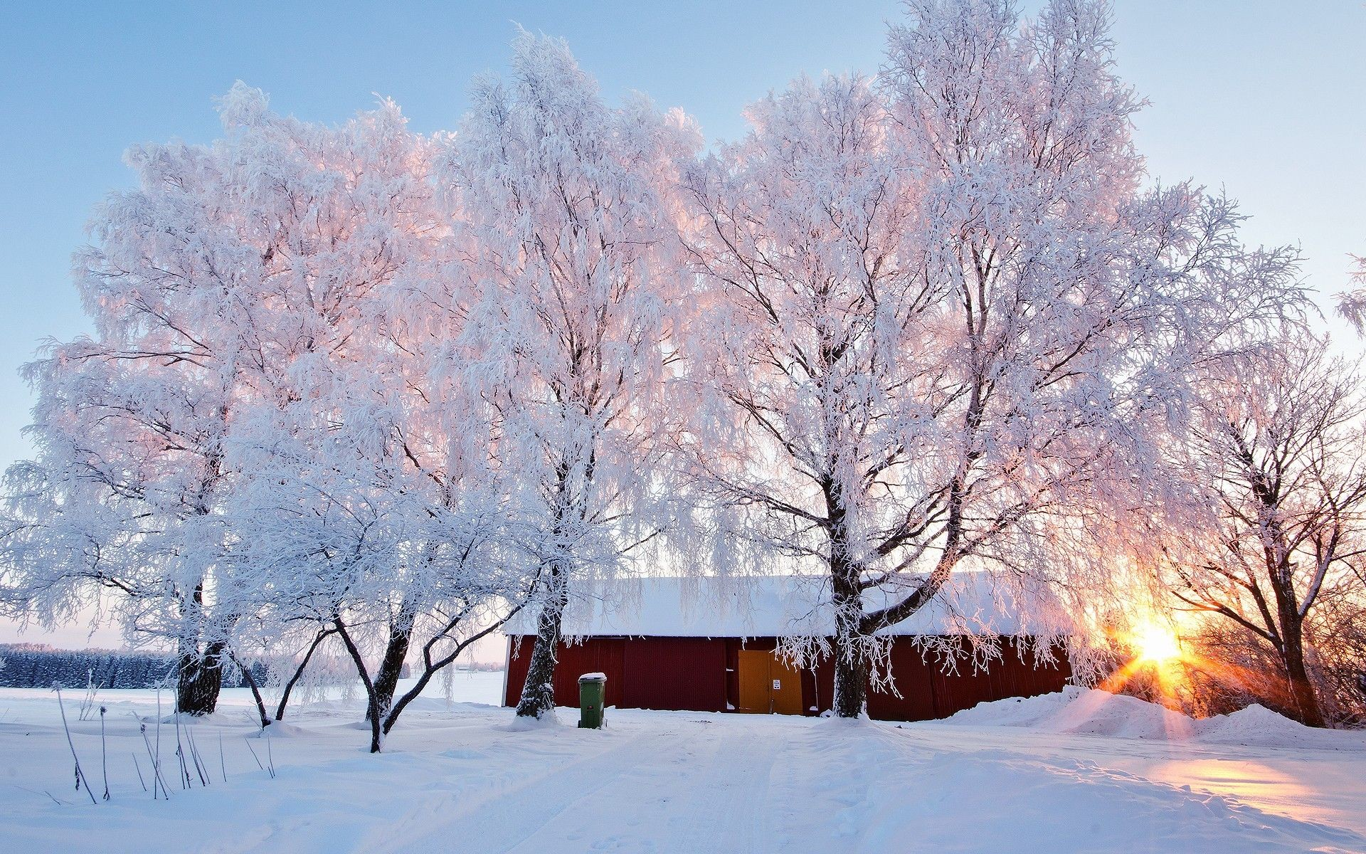 1920x1200 Winter cabin sunlight snow surays winter trees birches forest jpg   Large winter scenes wallpaper