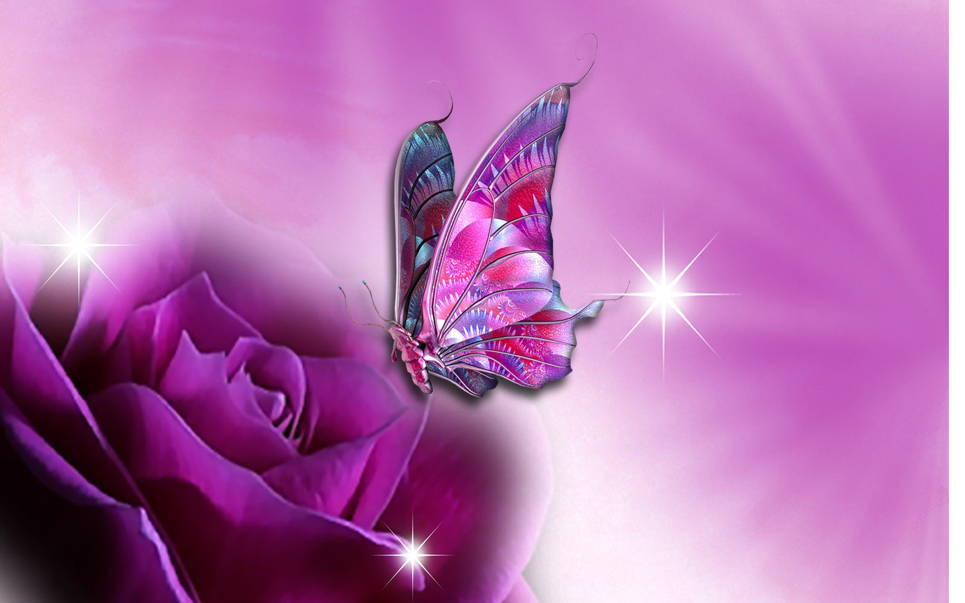 Pretty Butterfly Wallpaper 59 Images