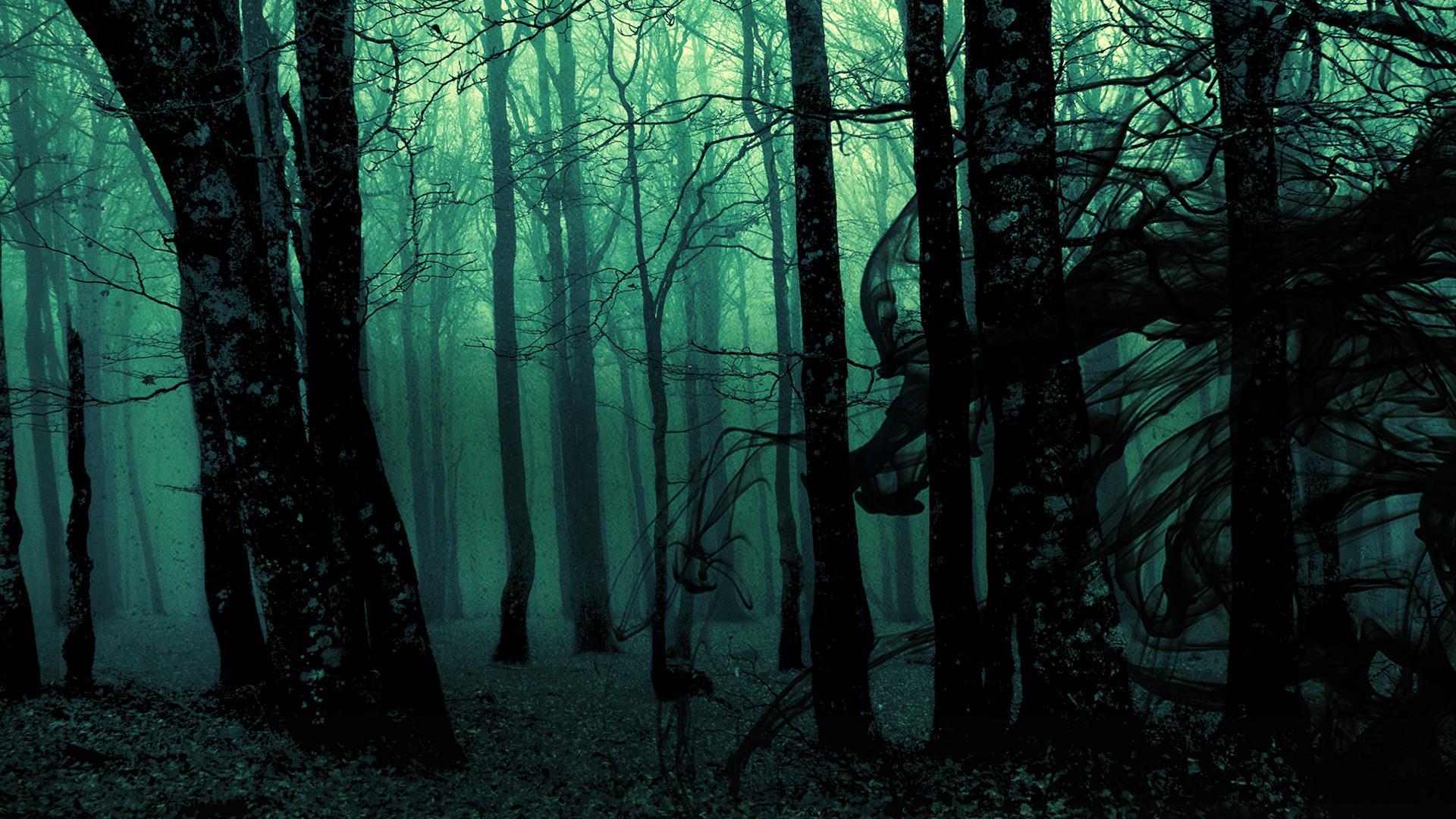Halloween Trees Pinterest