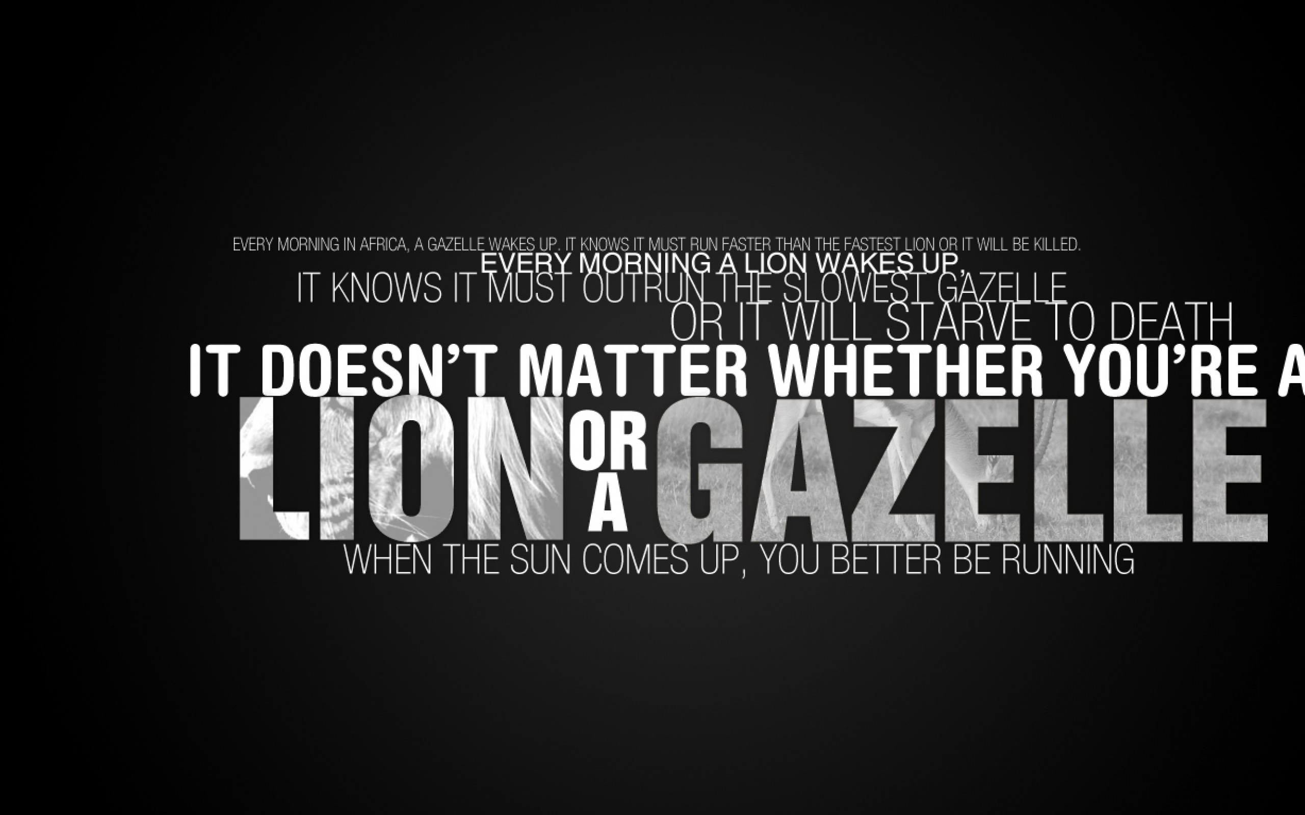 Animal pak quotes wallpaper 55 images - Animal pak motivational quotes ...