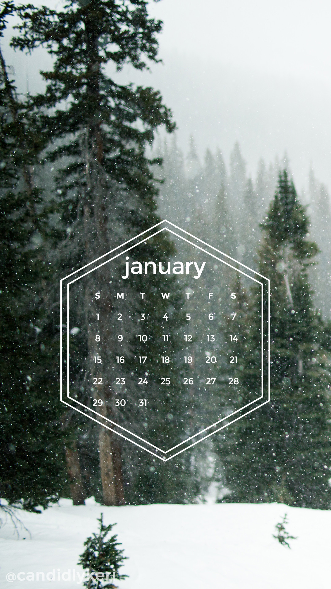 1080x1920 Snow-forest-pine-trees-snowing-geometric-January -calendar-you-can-download-for-free-o-wallpaper-wp6809919
