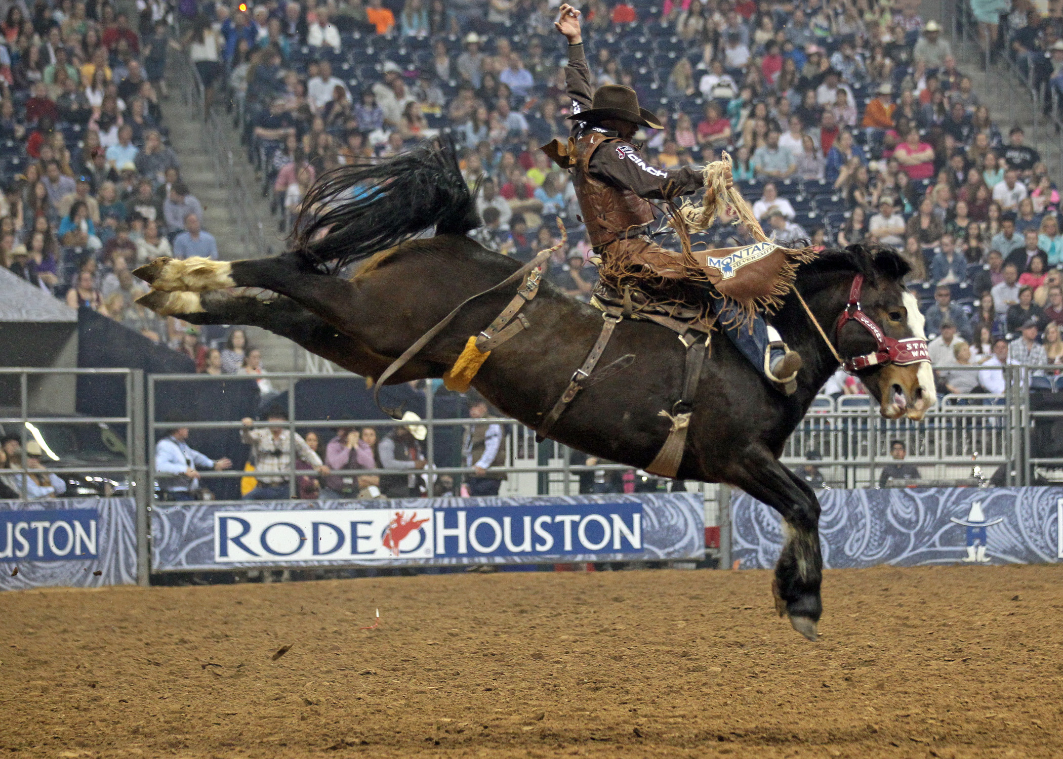 2100x1500 Stampede Horse Shatters Arena Record In Houston