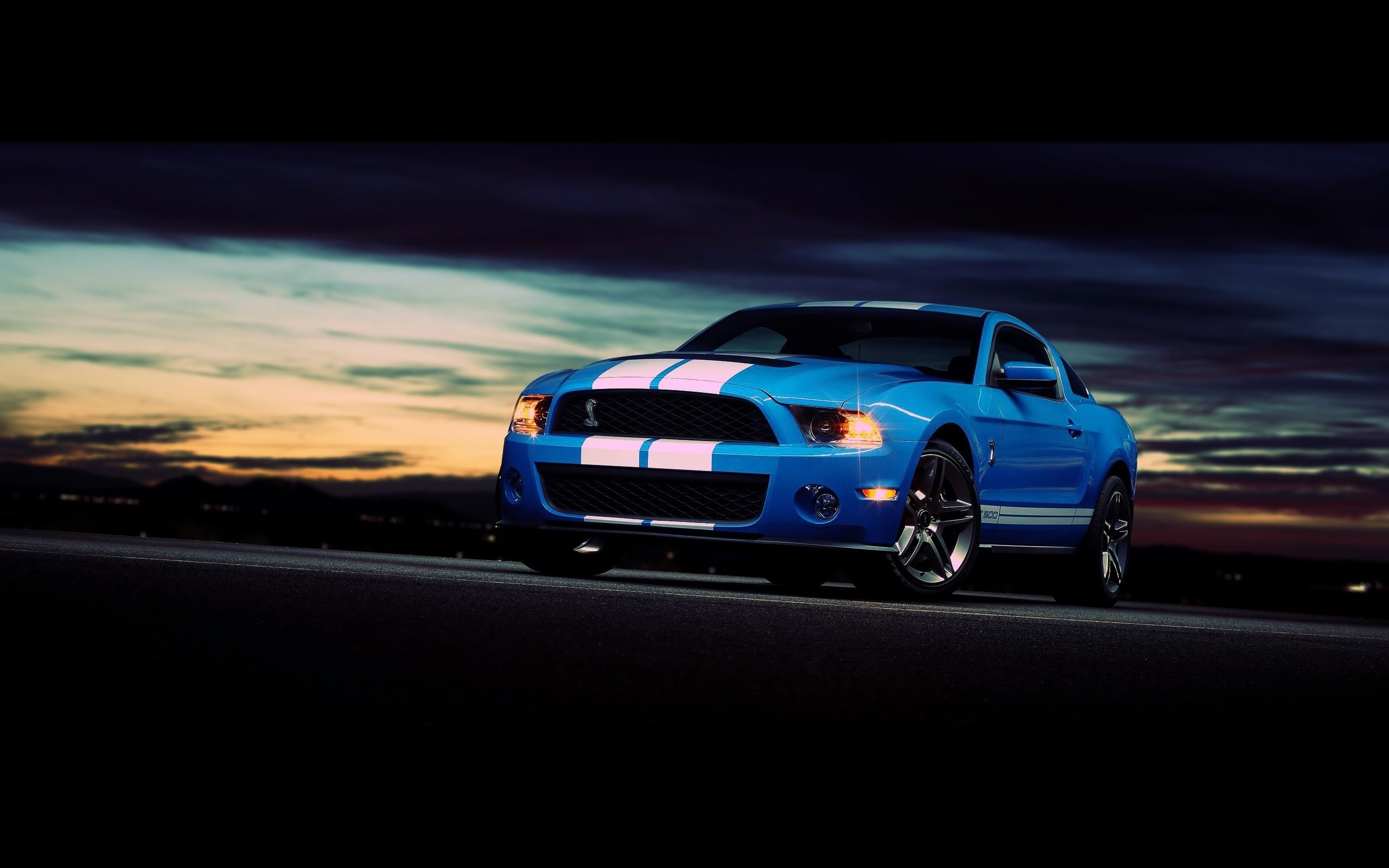 2560x1600 HD Wallpaper | Background ID:396443.  Vehicles Ford Mustang Shelby  GT500