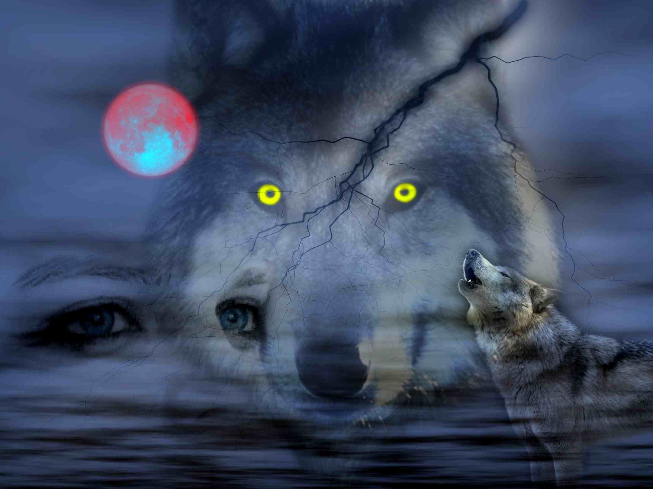 2200x1650 Night Of Wolves wallpaper free