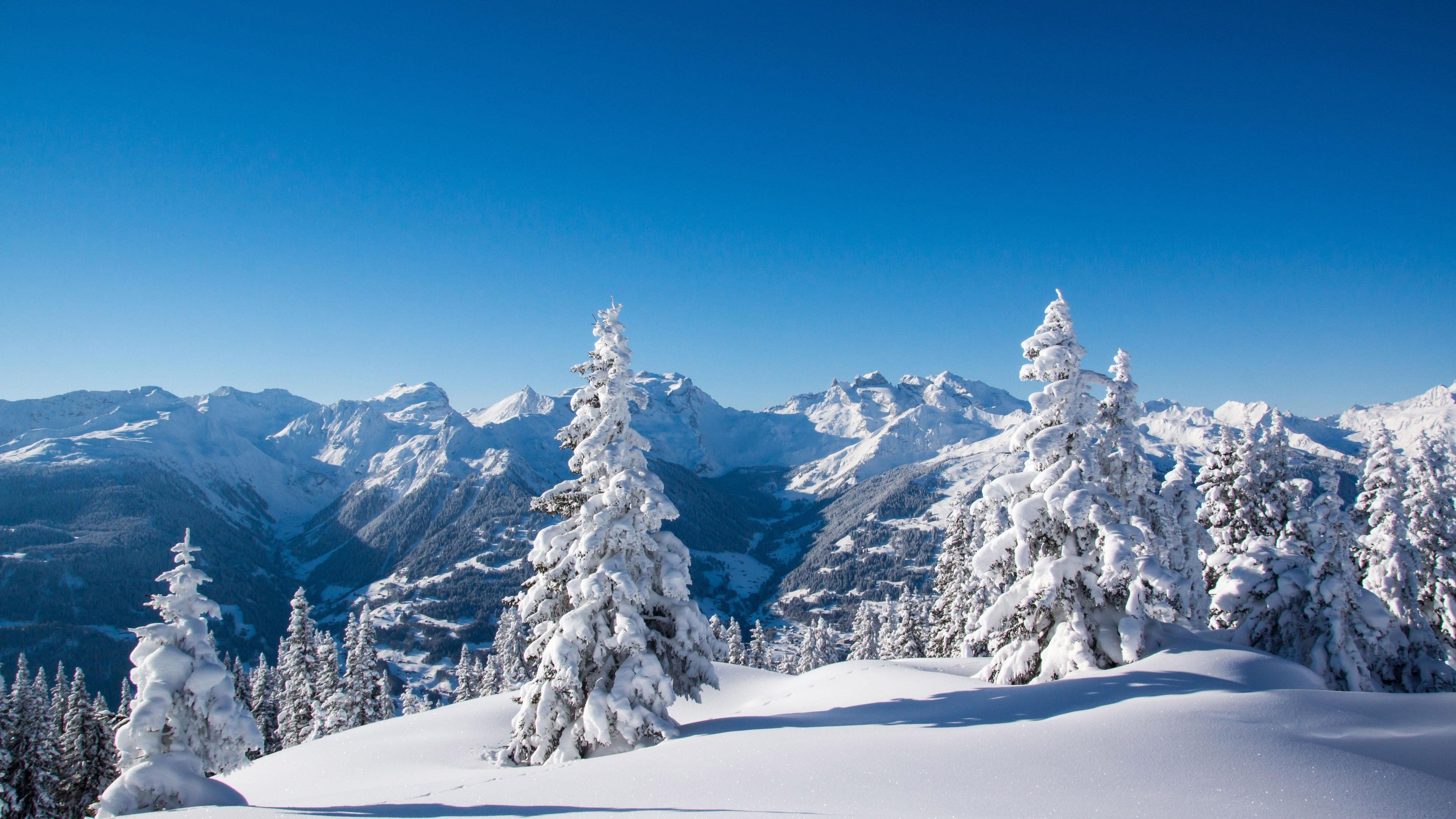Snowfall Wallpaper 63 Images
