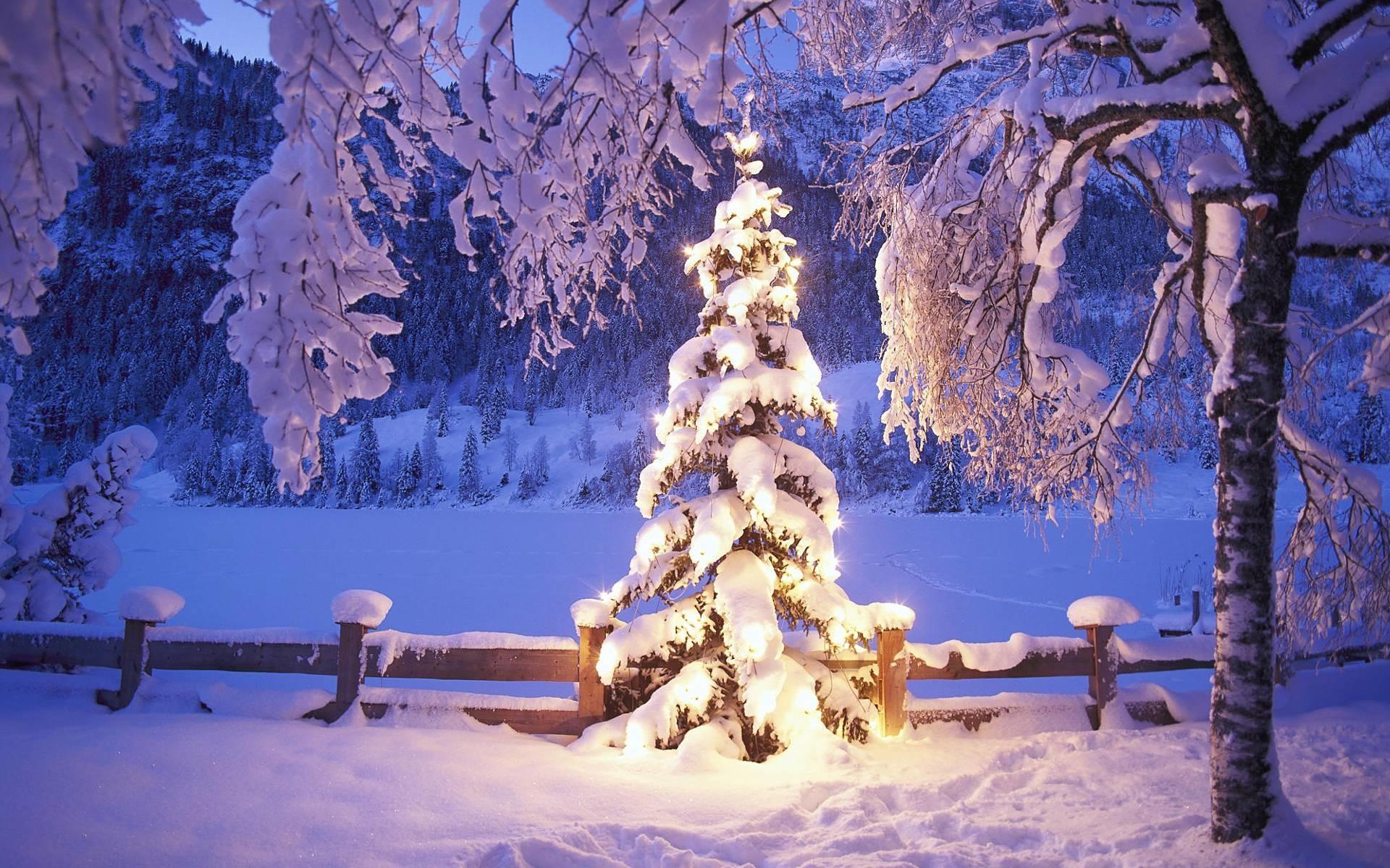 Winter Christmas Desktop Backgrounds (50+ images)