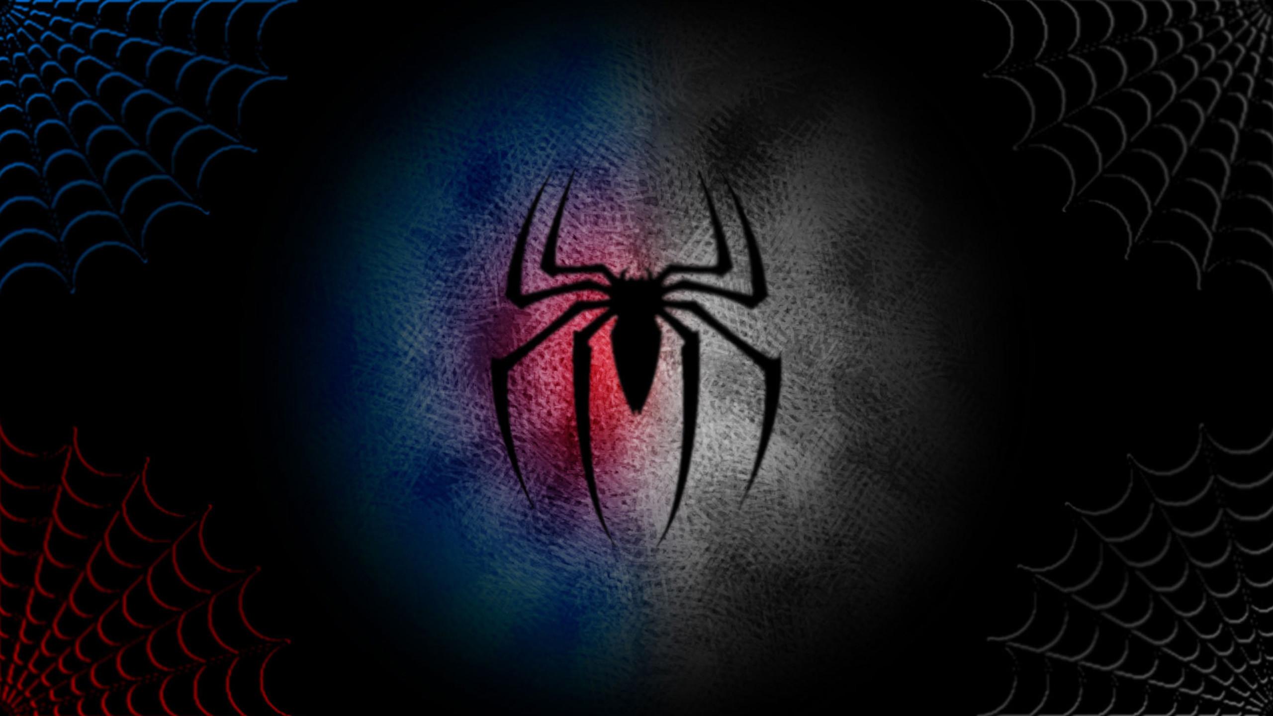 Hd Spiderman Logo Wallpaper 71 Images