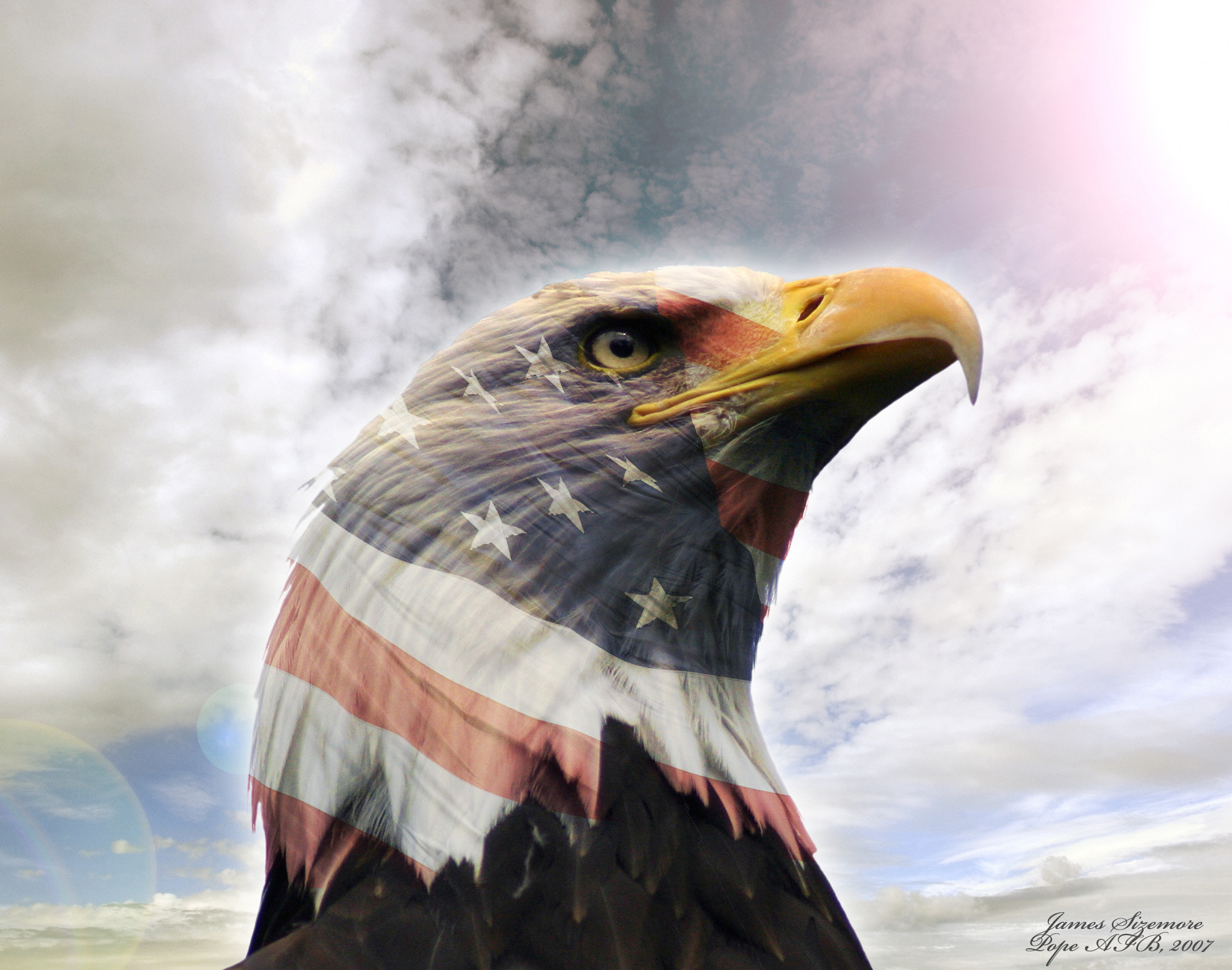 1980x1560 usa eagle wallpaper download -#main