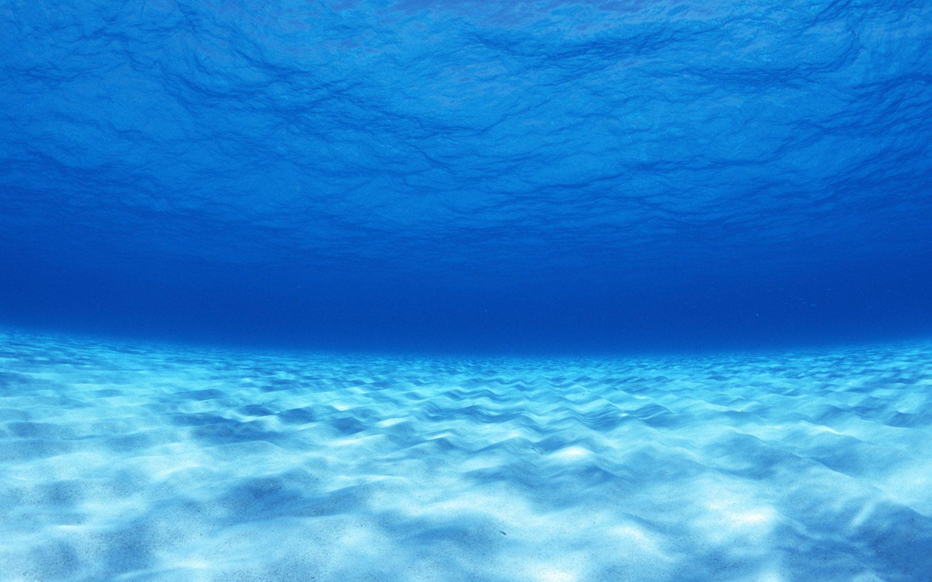 Under Sea Wallpaper 77 Images