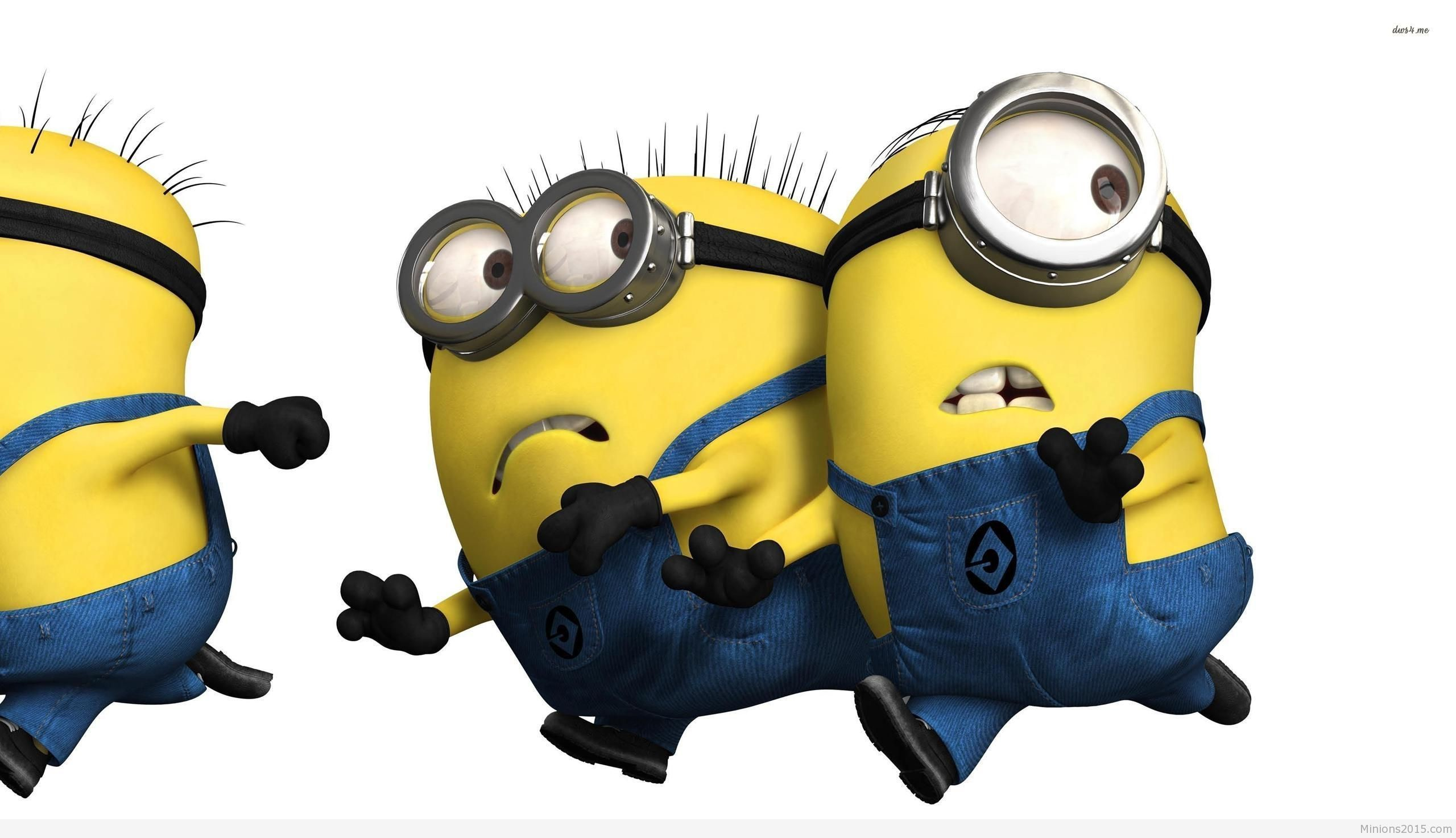 2560x1473 Despicable Me Minion Wallpapers (78 Wallpapers)