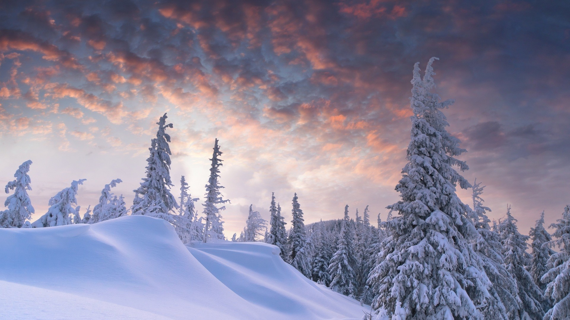 Hd Snow Wallpaper 82 Images