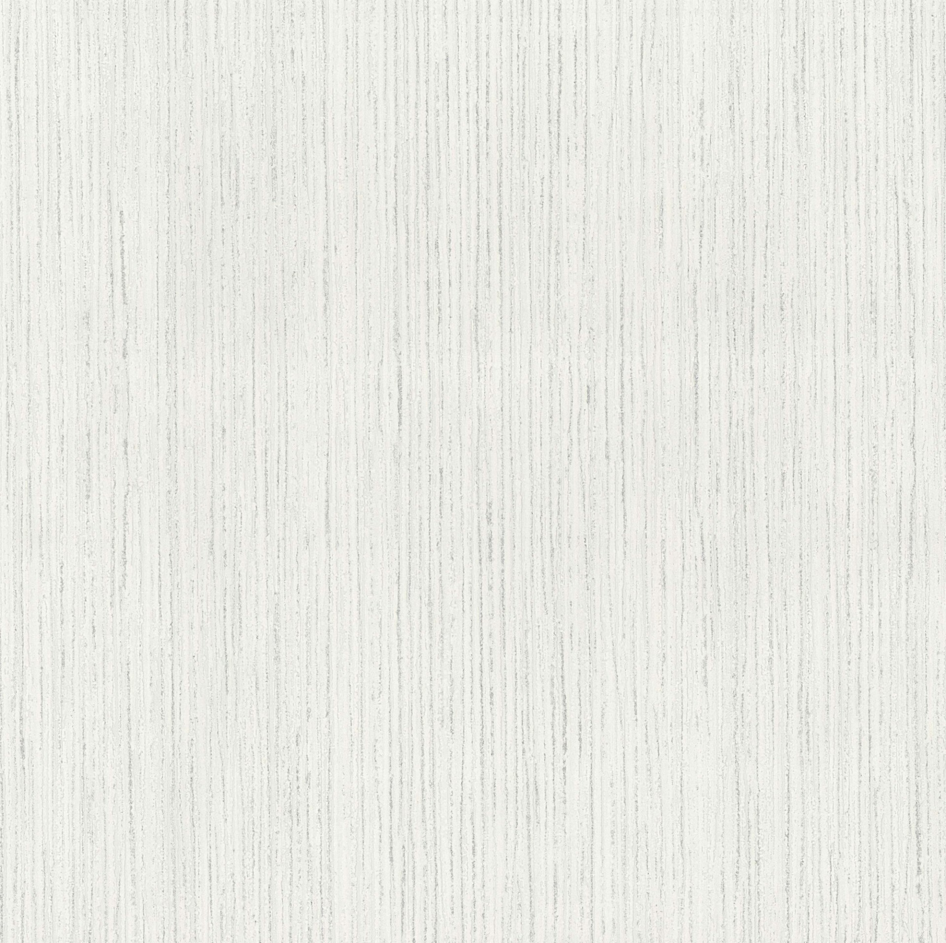 birch texture images reverse search