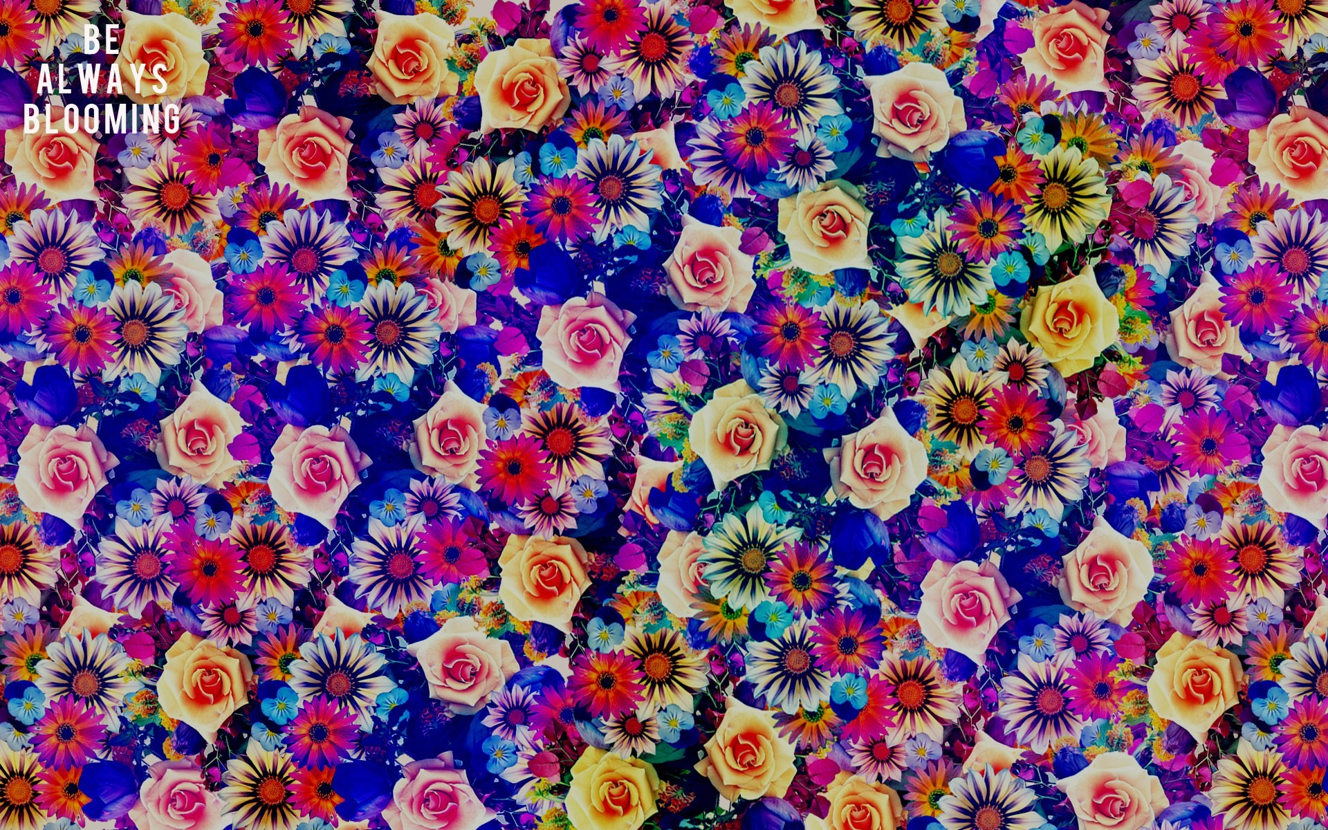 Bohemian Desktop Wallpaper 46 Images