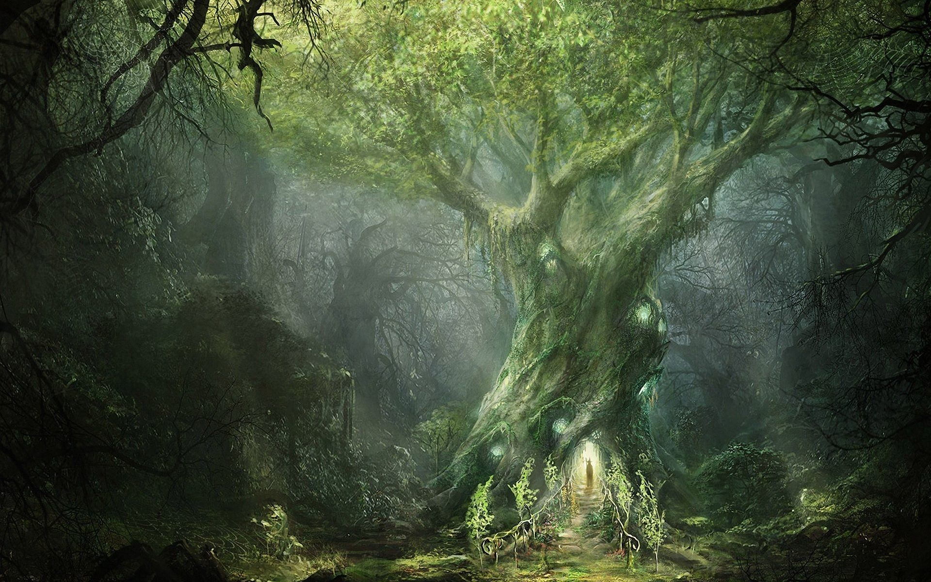 1920x1200 Fantasy Forest big twisted tree with surrounding light |  TomorrowlandInspAration | Pinterest | Fantasy forest, Wallpaper backgrounds  and Wallpaper