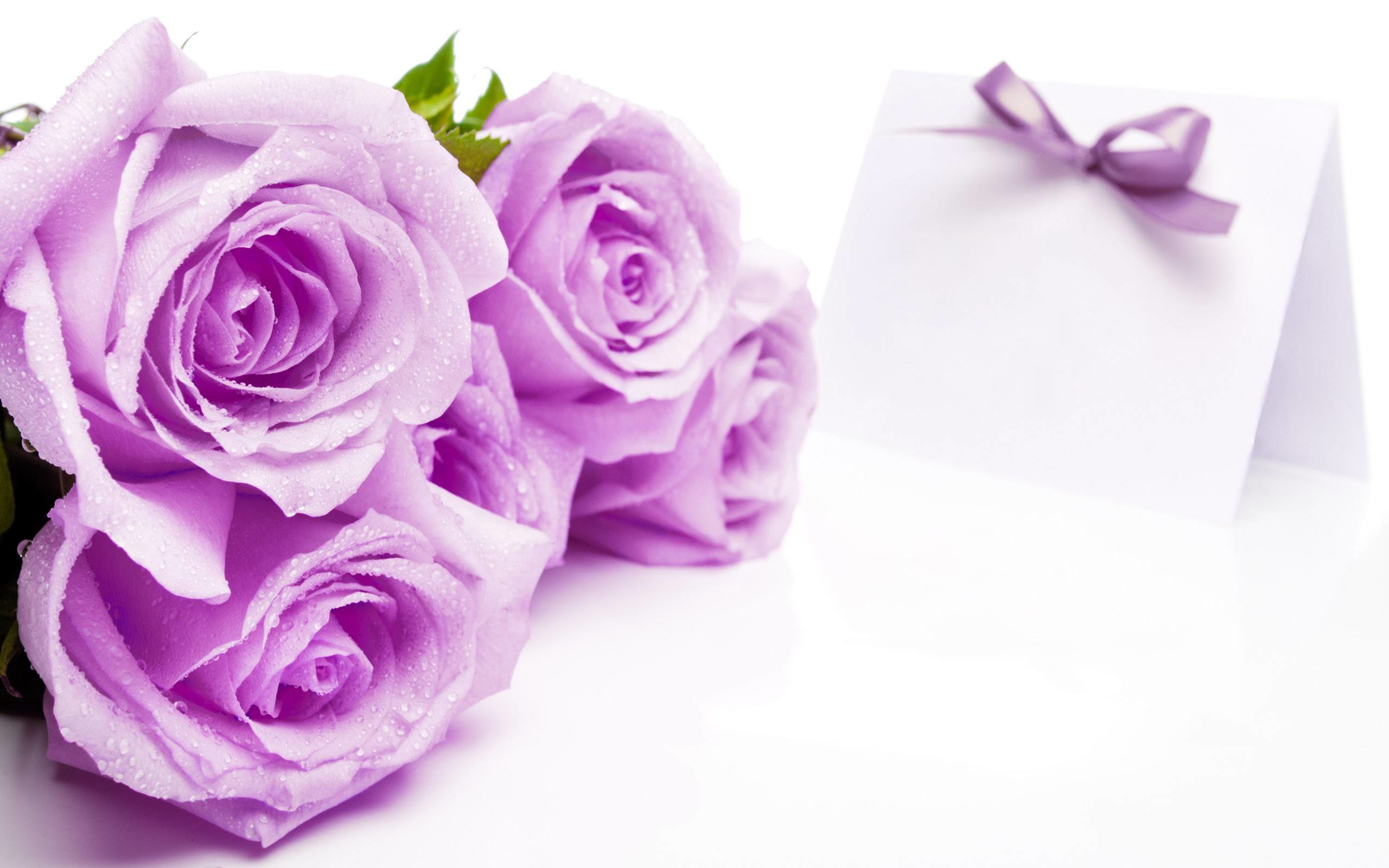 pictures of beautiful flowers wallpapers (56+ images)