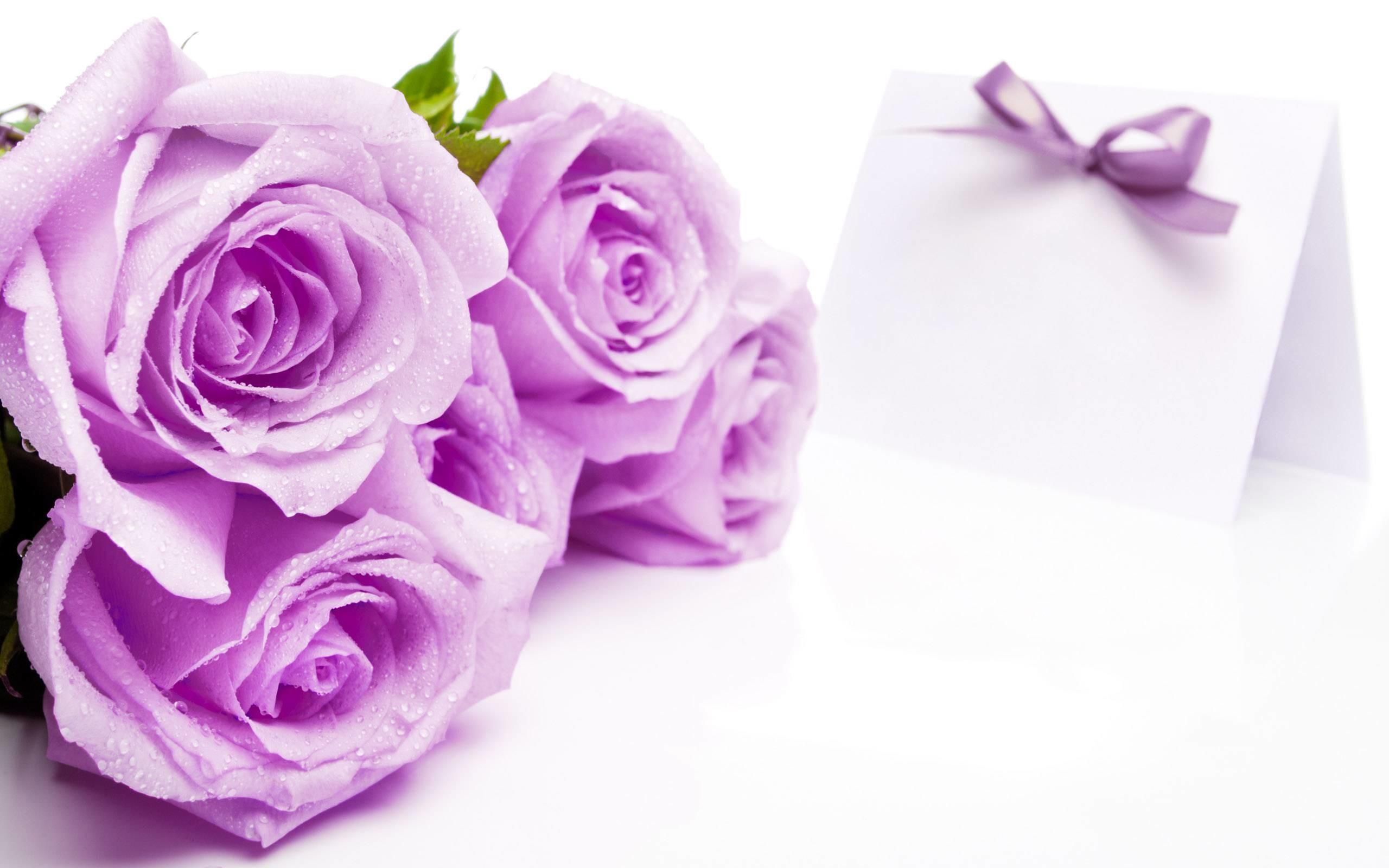 Pictures of beautiful flowers wallpapers 56 images 2560x1600 beautiful flowers pictures for facebook background 1 hd wallpapers izmirmasajfo