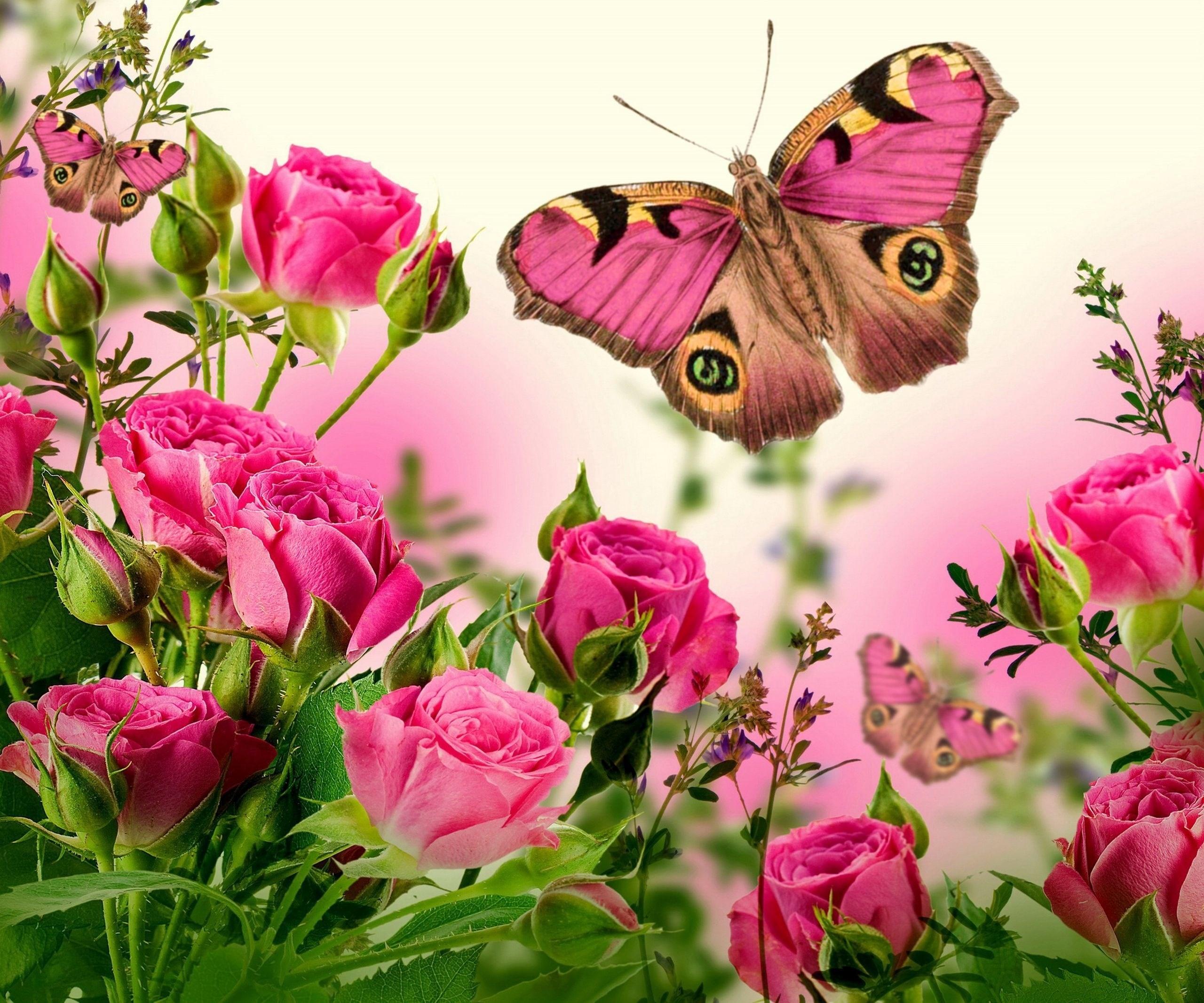 Rose Screensavers Wallpaper (46+ images)