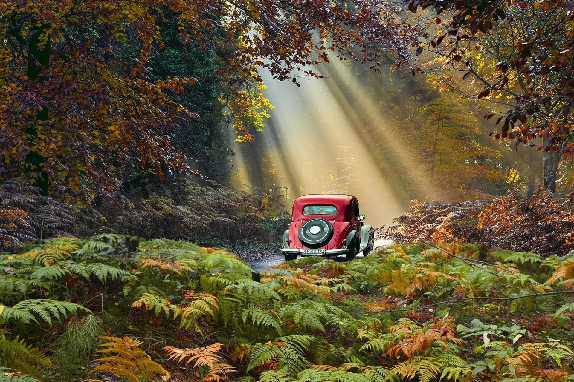 1920x1280 Vehicles - Vintage Car Sunbeam Vehicle Car Road Fall Foliage Wallpaper