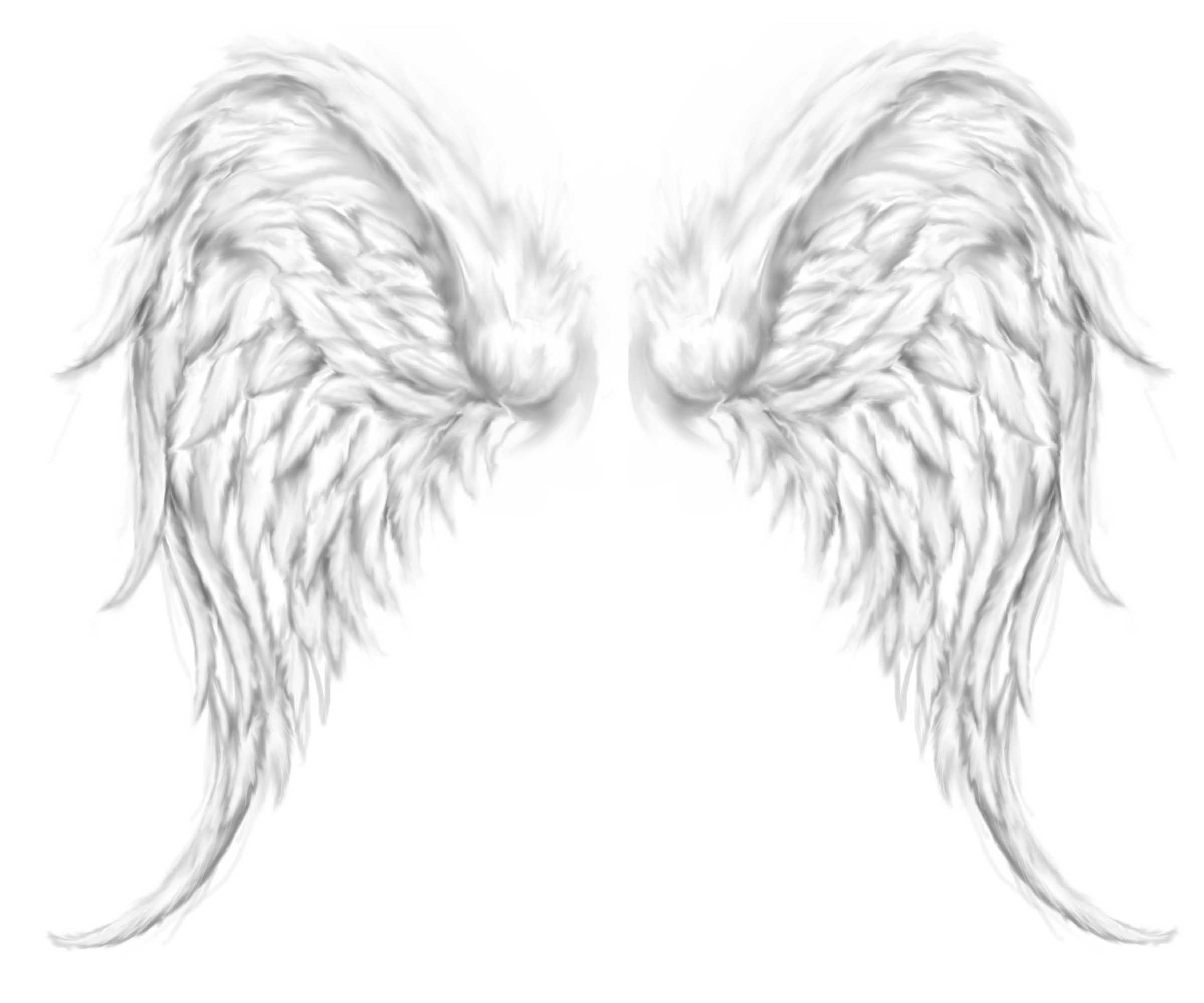 Cool Tattoo Backgrounds: Angel Wings Background (49+ Images