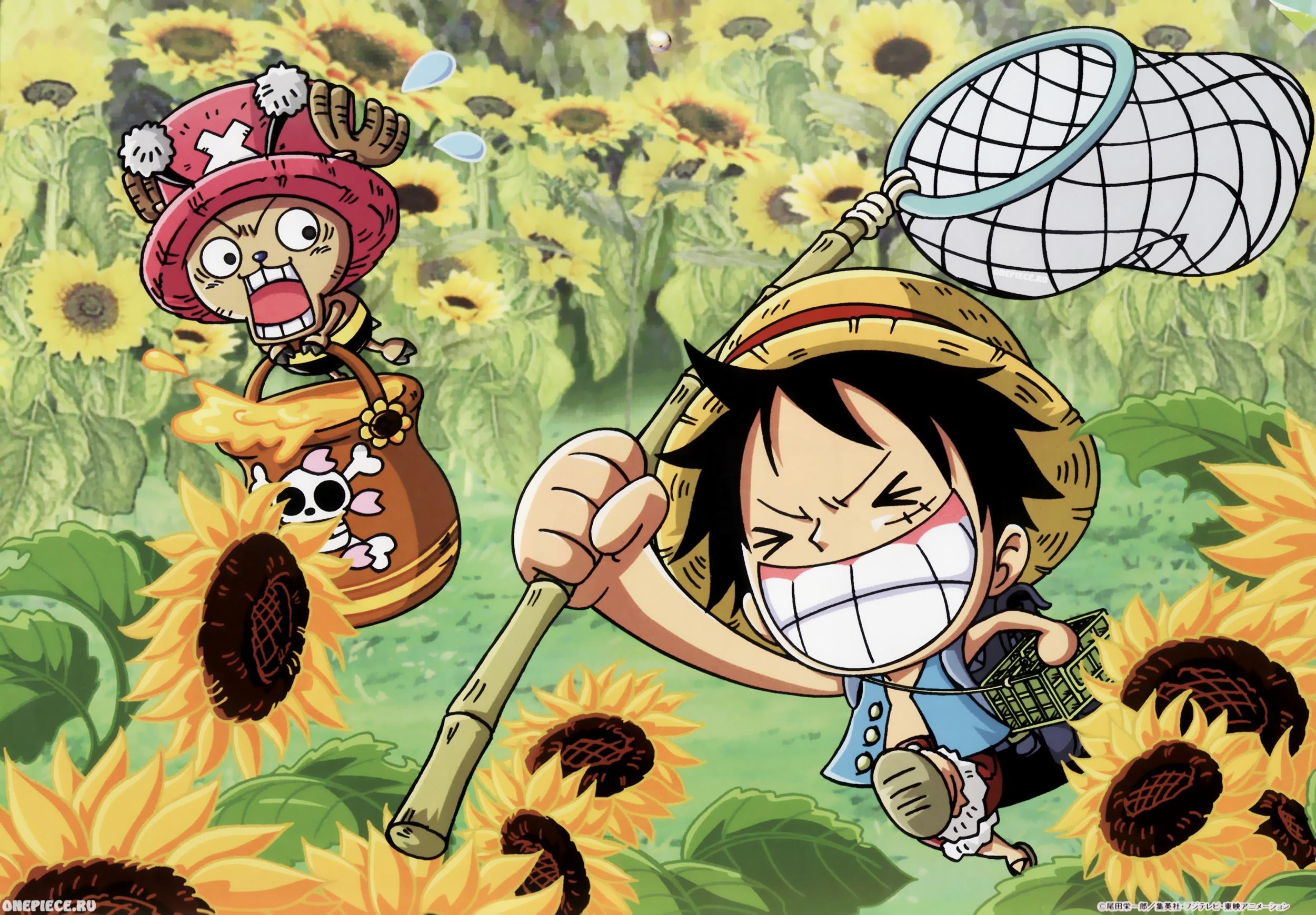 One Piece Chopper Wallpaper (80+ images)