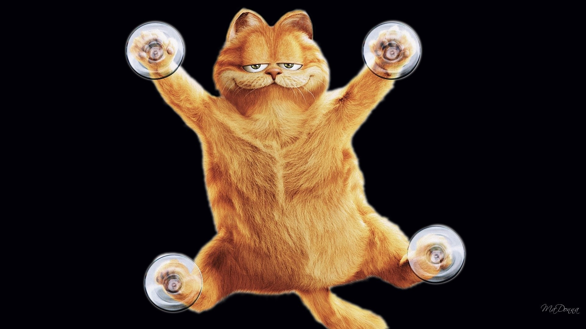 Garfield Wallpaper 58 Images