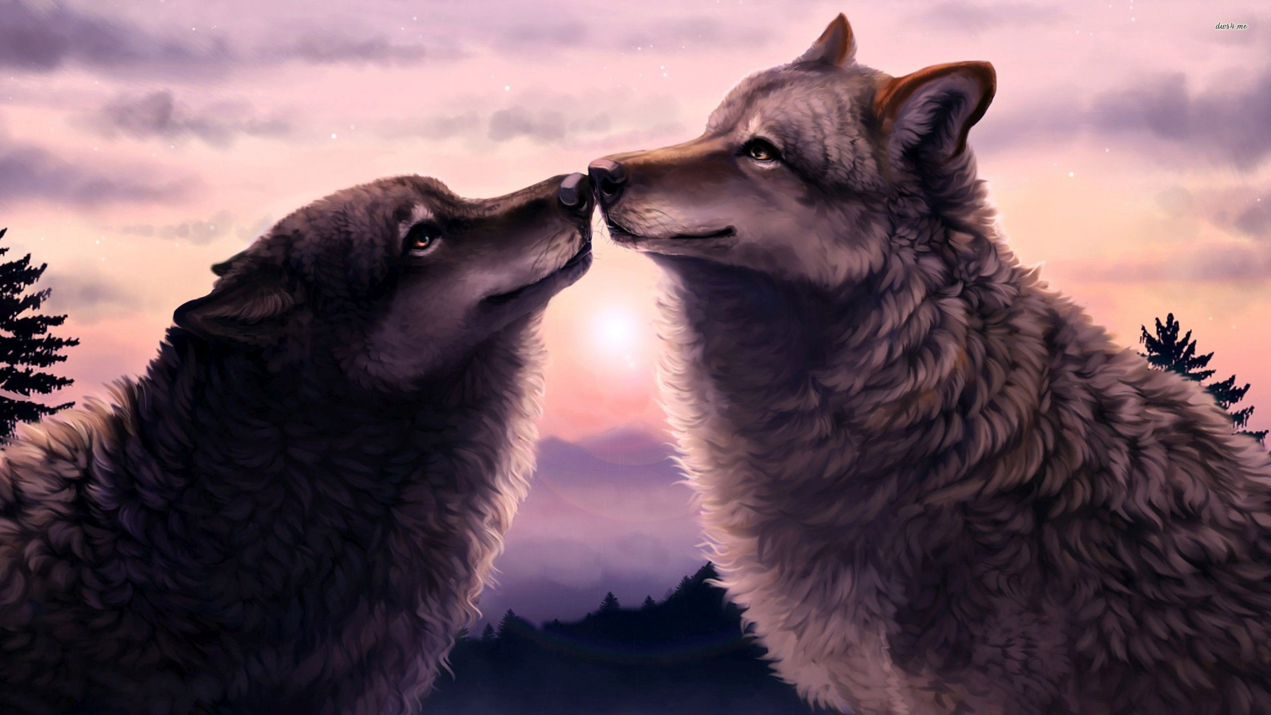 2560x1440 Wolves love wallpaper - Artistic wallpapers - #29885