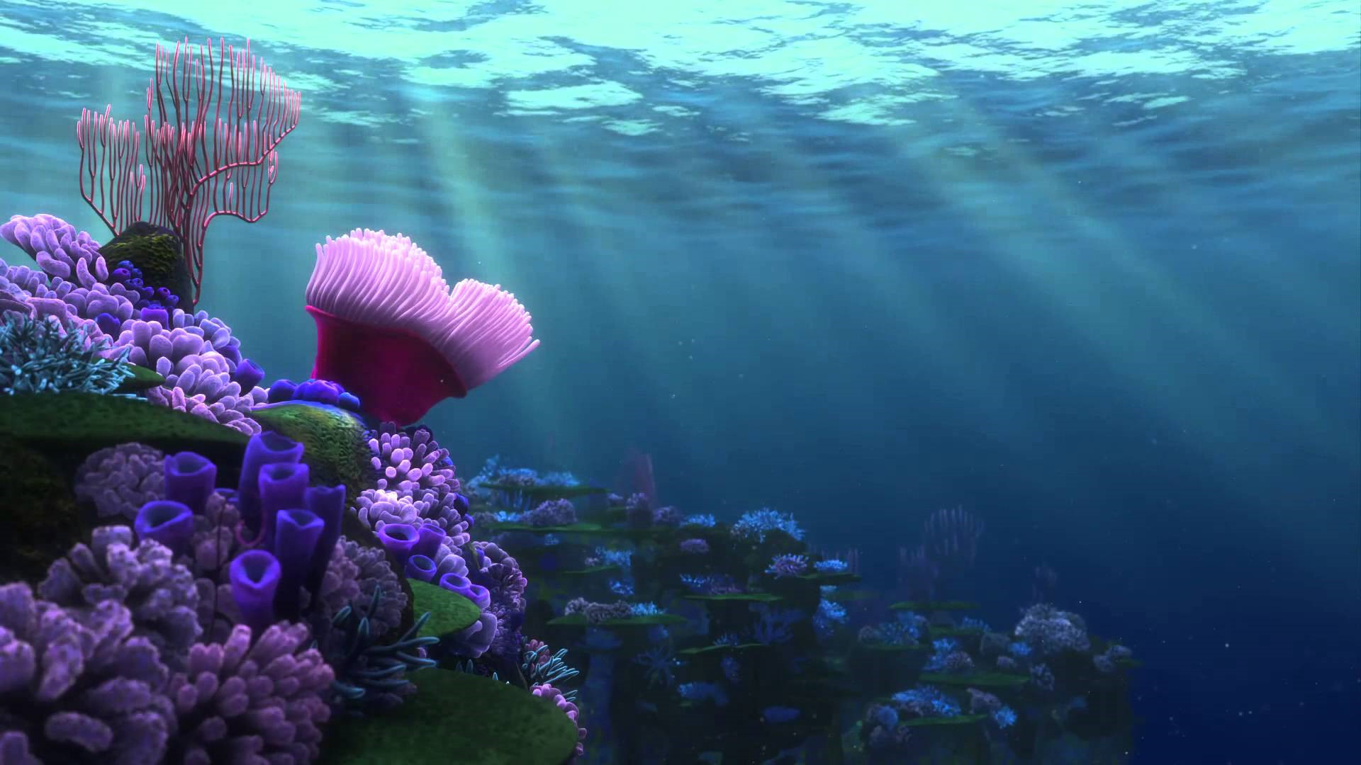 finding nemo backgrounds (59+ images)