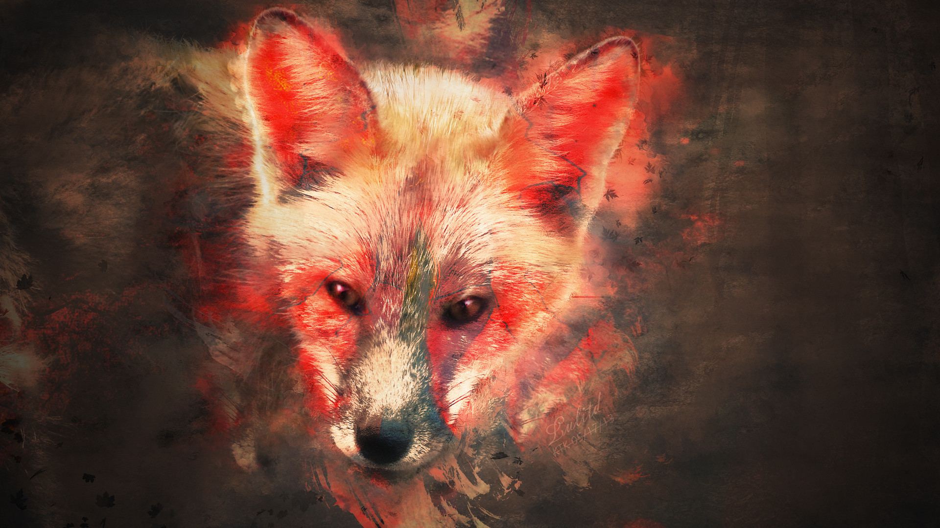 1920x1080 splash of fox wallpaper by kaki tori customization wallpaper animals .