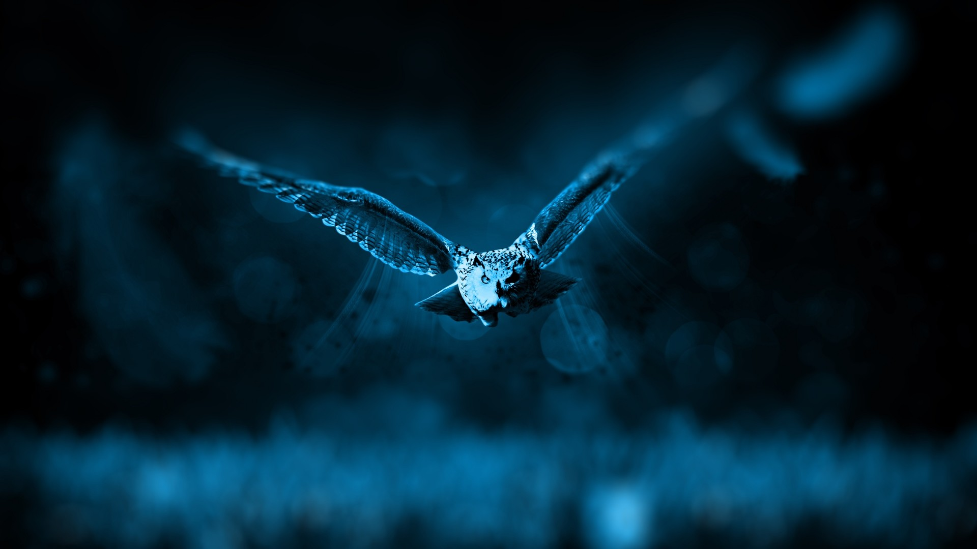 1920x1080 Preview wallpaper owl, flight, bird, photoshop, predator