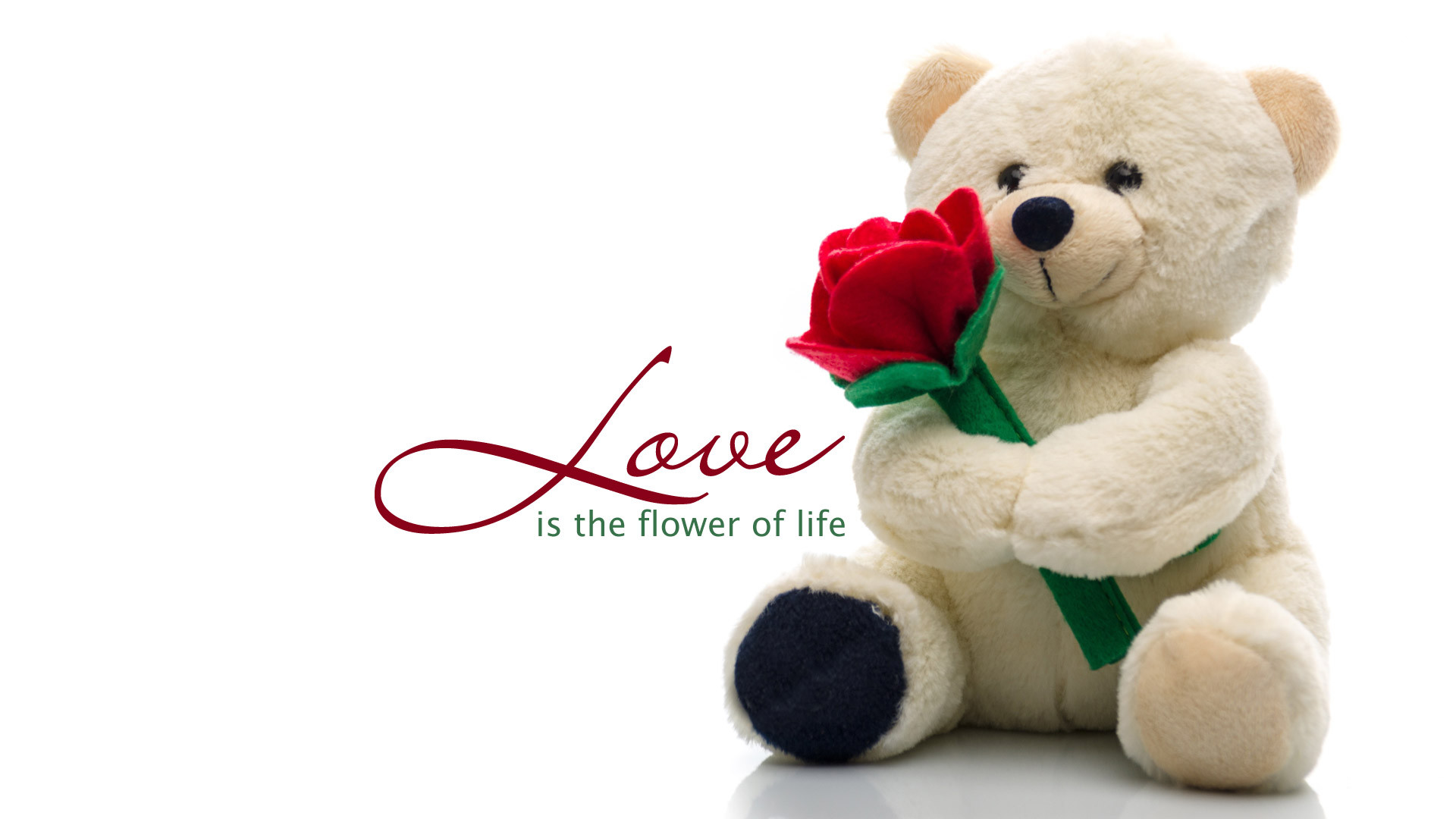 Image result for cute teddy bear with flower