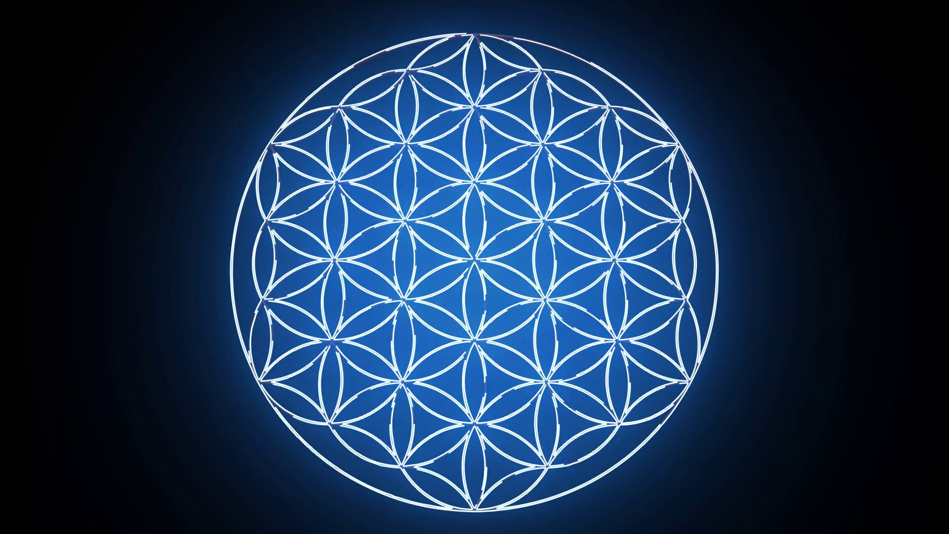 1920x1080 The Flower of Life Forming Sacred Geometry Symbol Motion Background -  VideoBlocks