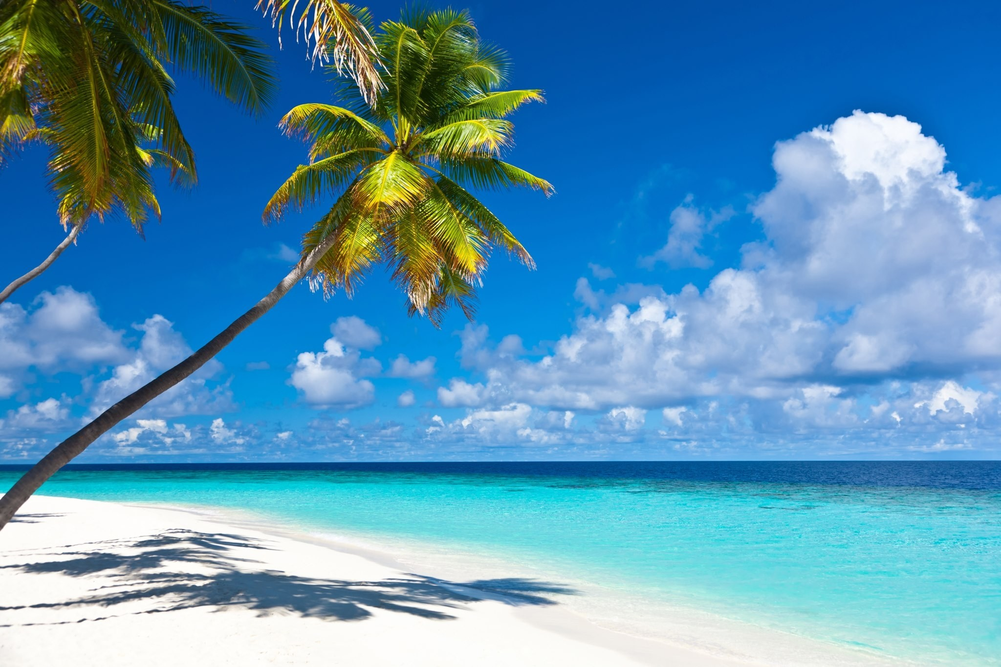 Tropical Island Beach Ambience Sound: Caribbean Beach Pictures Wallpaper (70+ Images