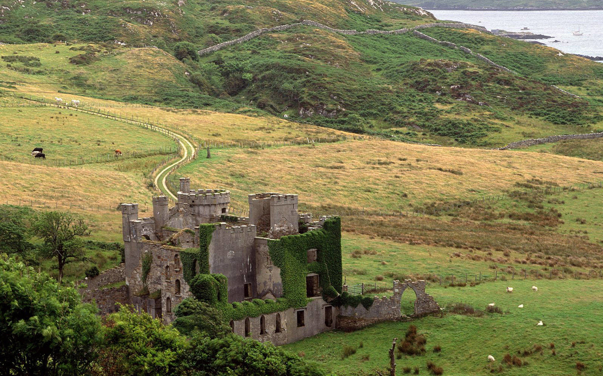 1920x1200 Famous Irish Castle Wallpaper - Viewing Gallery