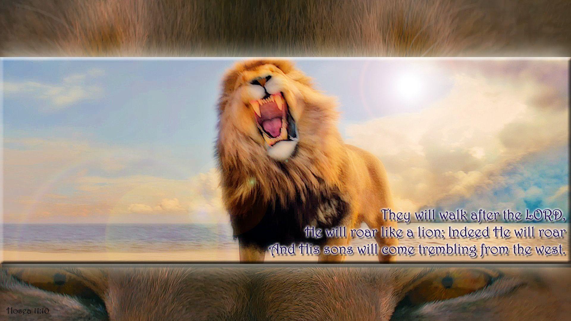 narnia aslan wallpaper (68+ images)