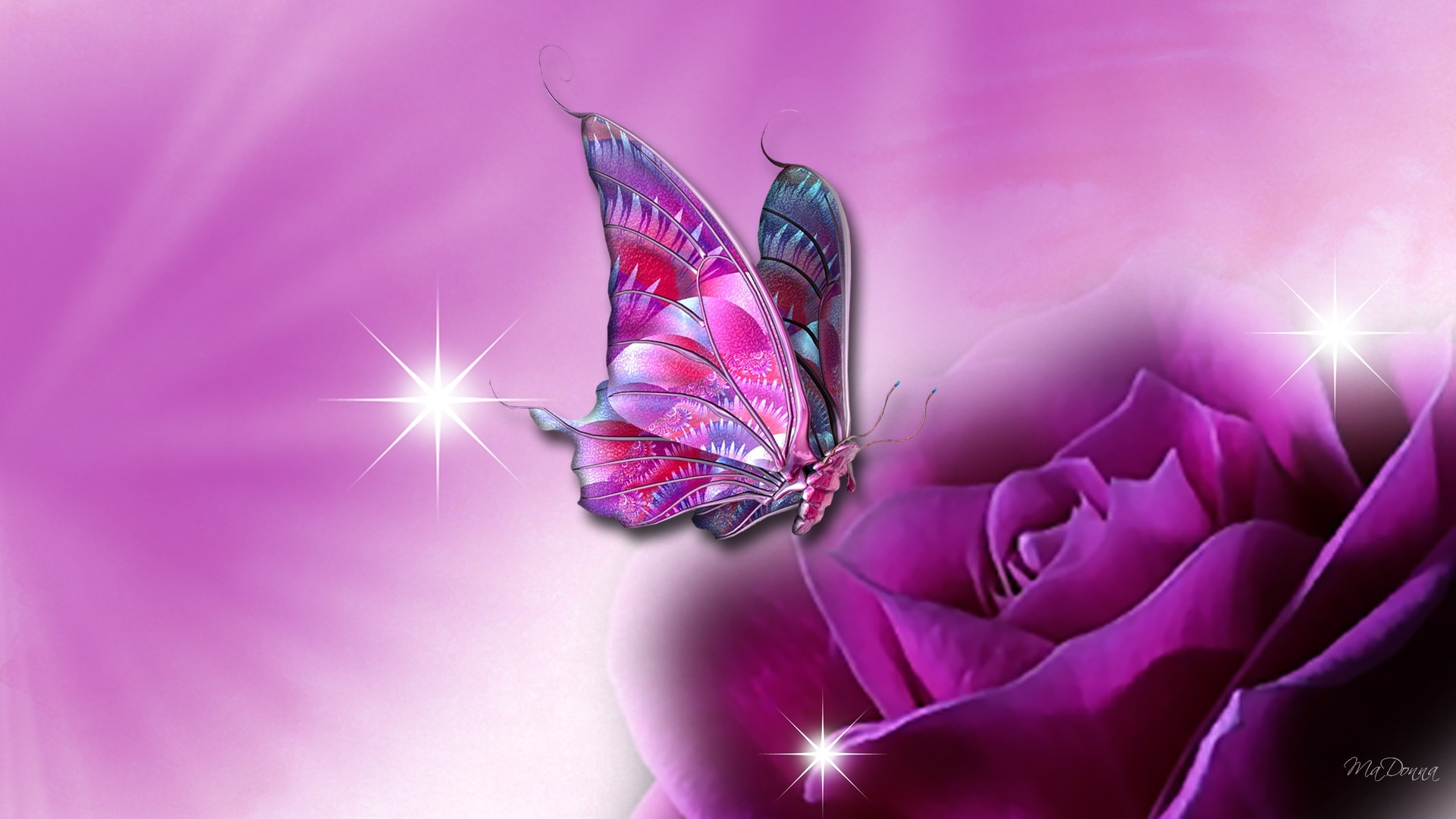 Butterfly Wallpaper For Computer 60 Images