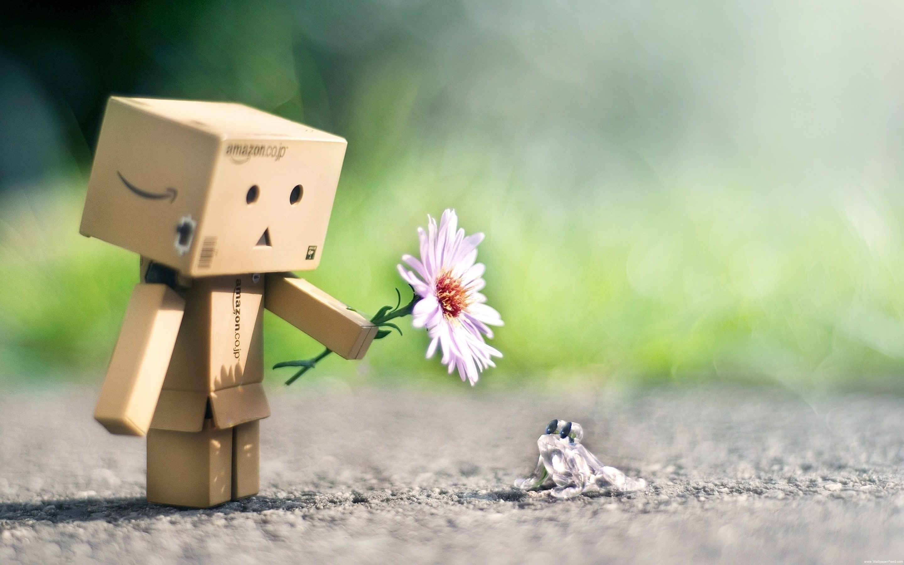 2880x1800 Cute Danbo Flower Frog Friendship Wallpaper