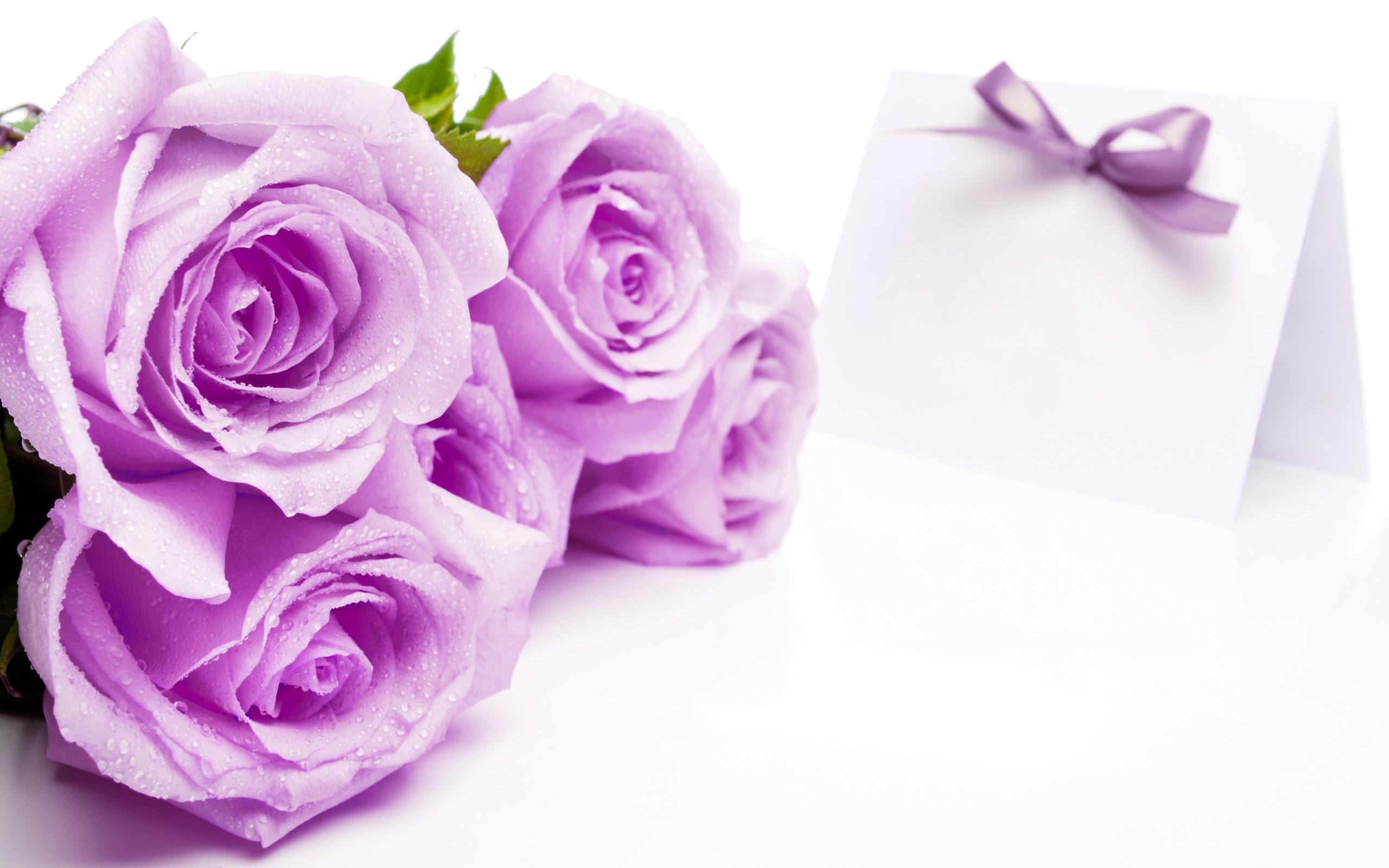 love flower wallpaper (48+ images)