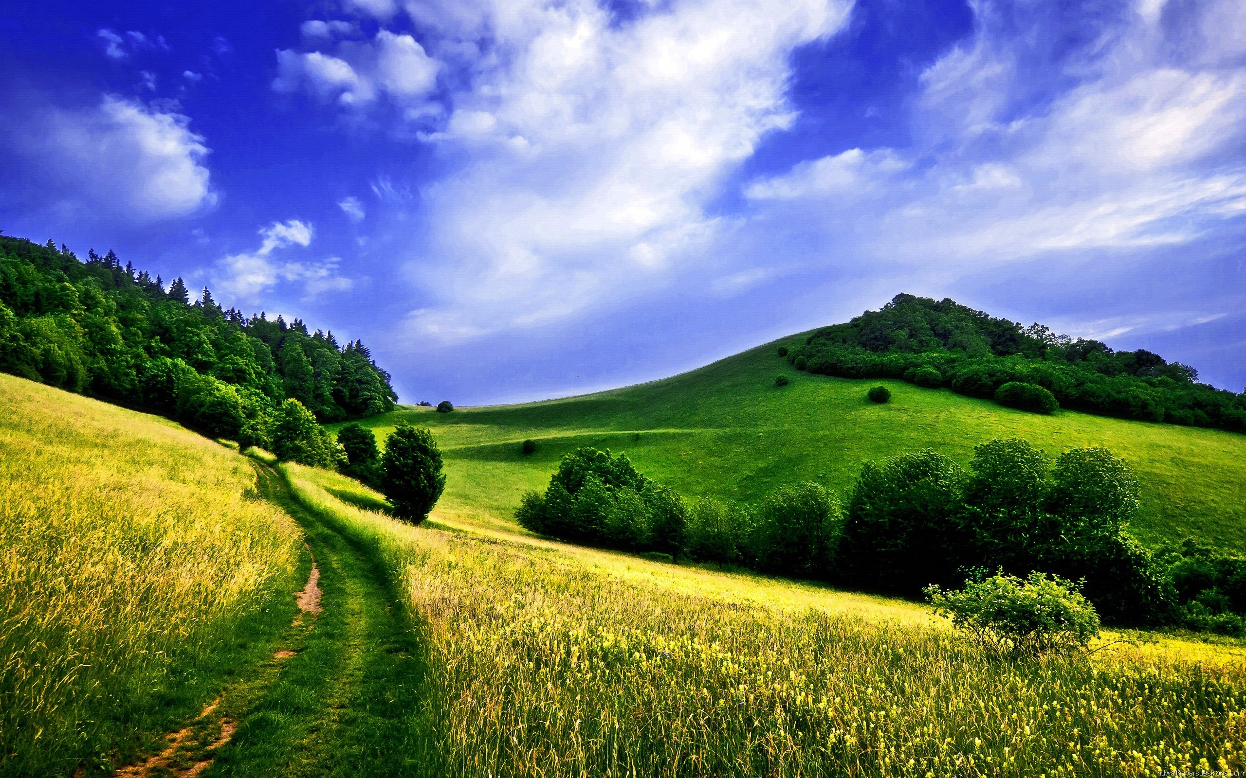 Nature Wallpapers Full Screen 76 Images