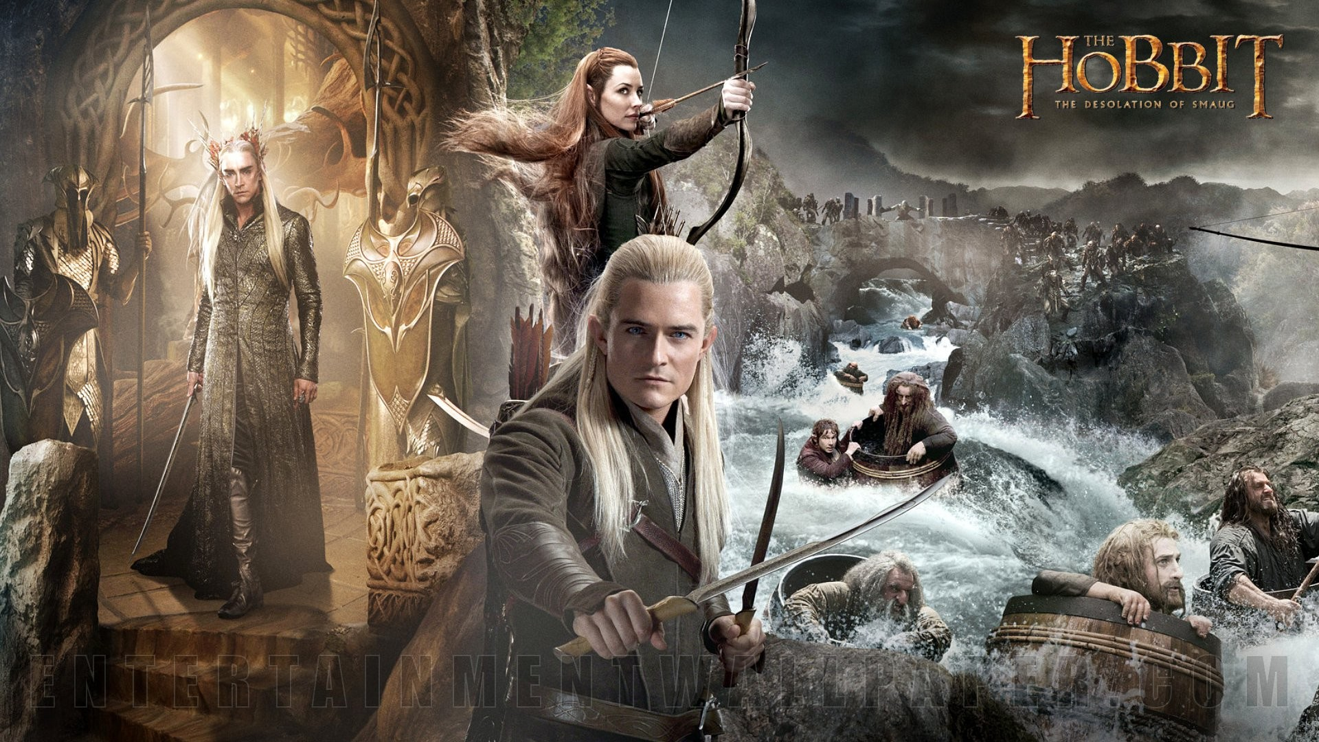 1920x1080 The Hobbit: The Desolation of Smaug Wallpaper HD