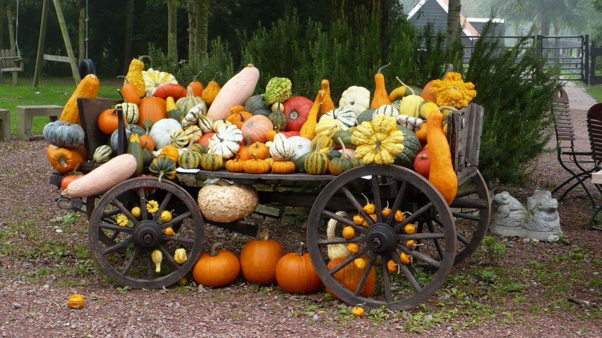 Fall Wallpaper Backgrounds With Pumpkins (55+ images)