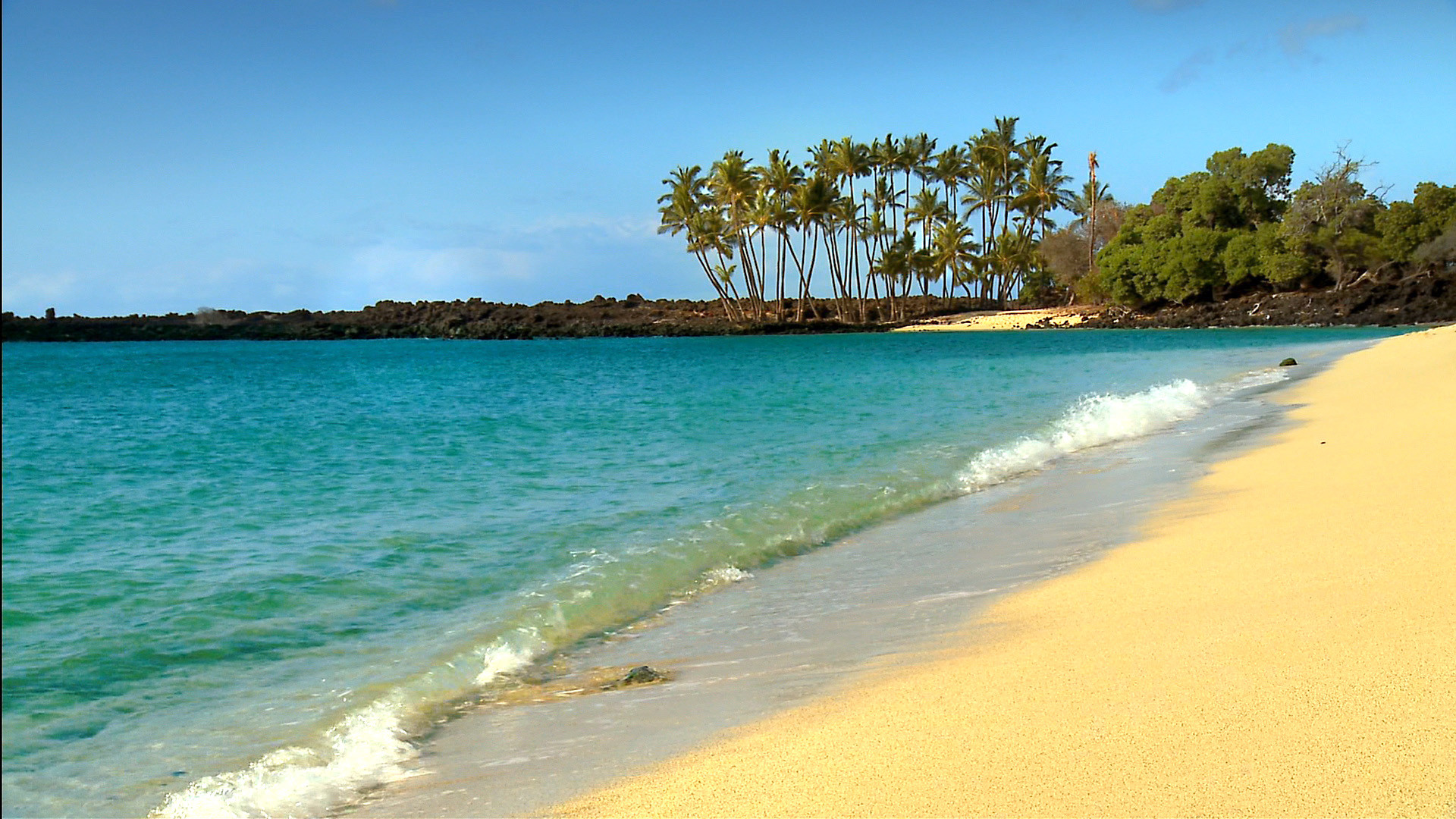 Hawaii Beach Wallpaper Hd Free: Hawaii Beaches Wallpaper (52+ Images