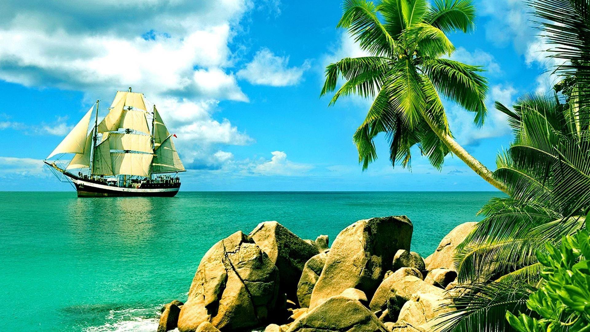 Tropical wallpaper 65 images 2560x1440 voltagebd Choice Image