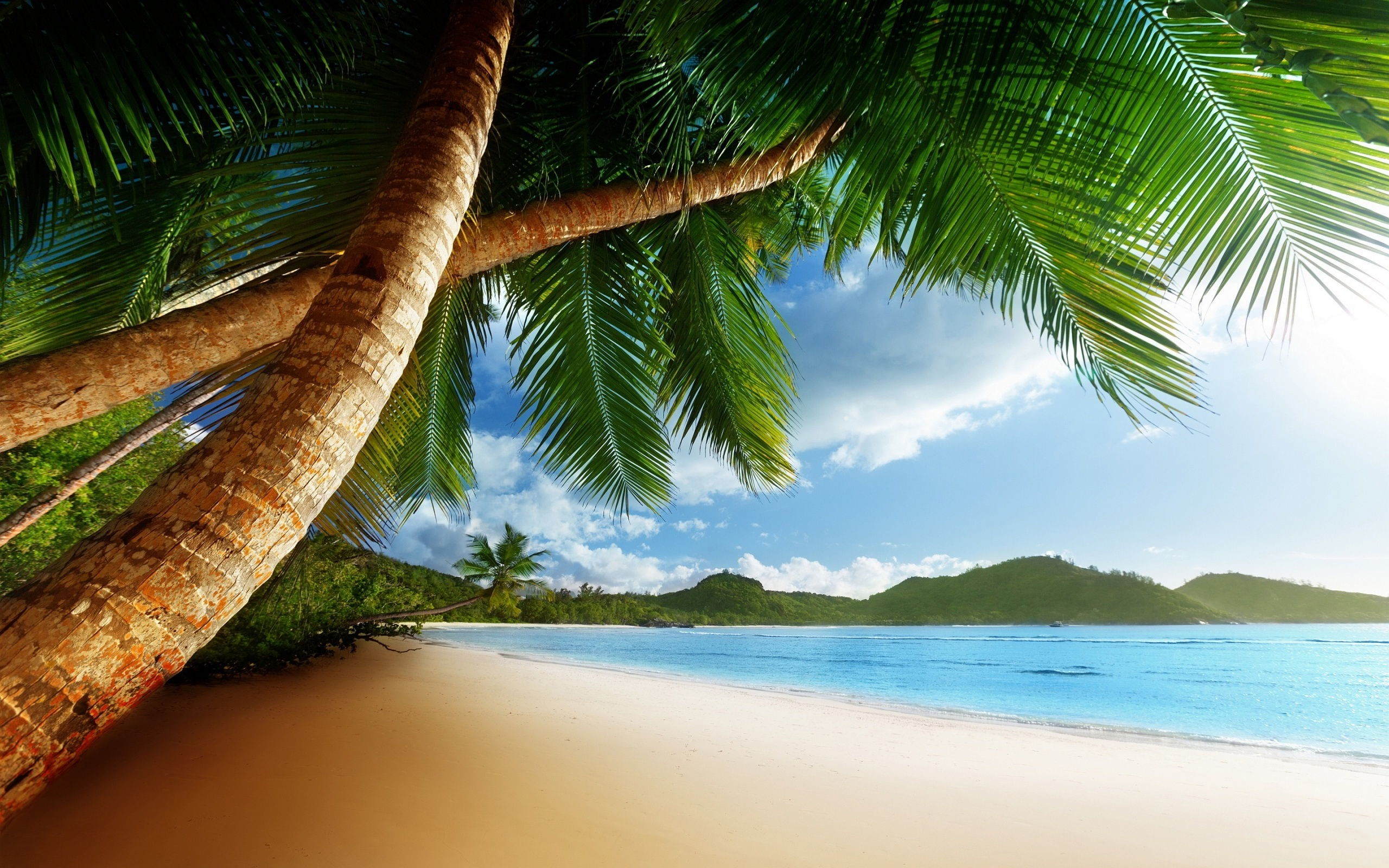 2560x1600 Awesome Caribbean Background Pictures New Best Hd Wallpaper Of Caribbean1