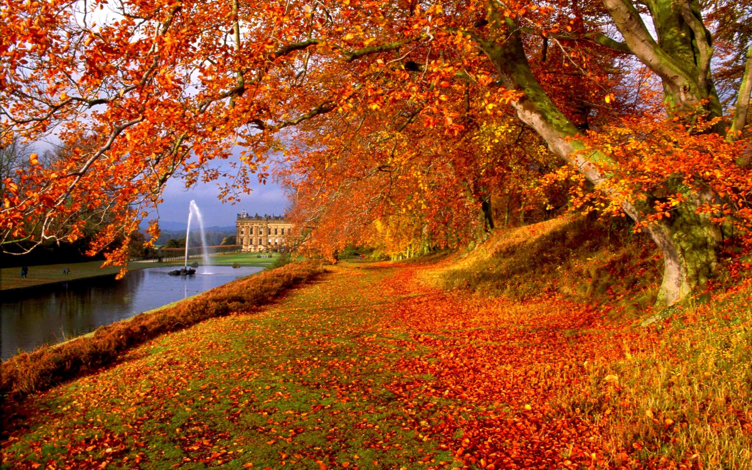 Screensavers and wallpaper autumn scene 53 images - Pics of fall scenes ...