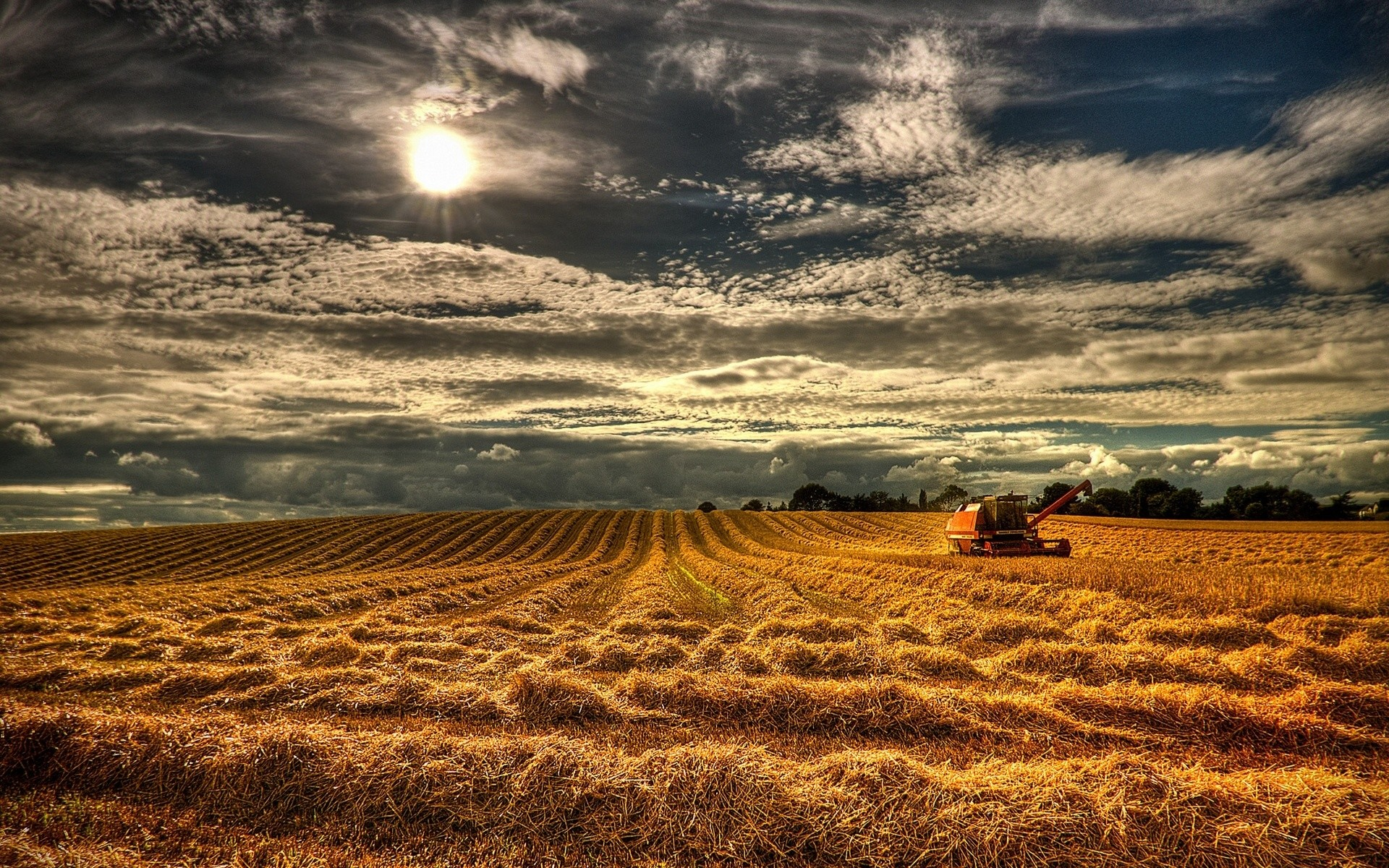1920x1200 Northern Ireland Harvest wallpapers and stock photos