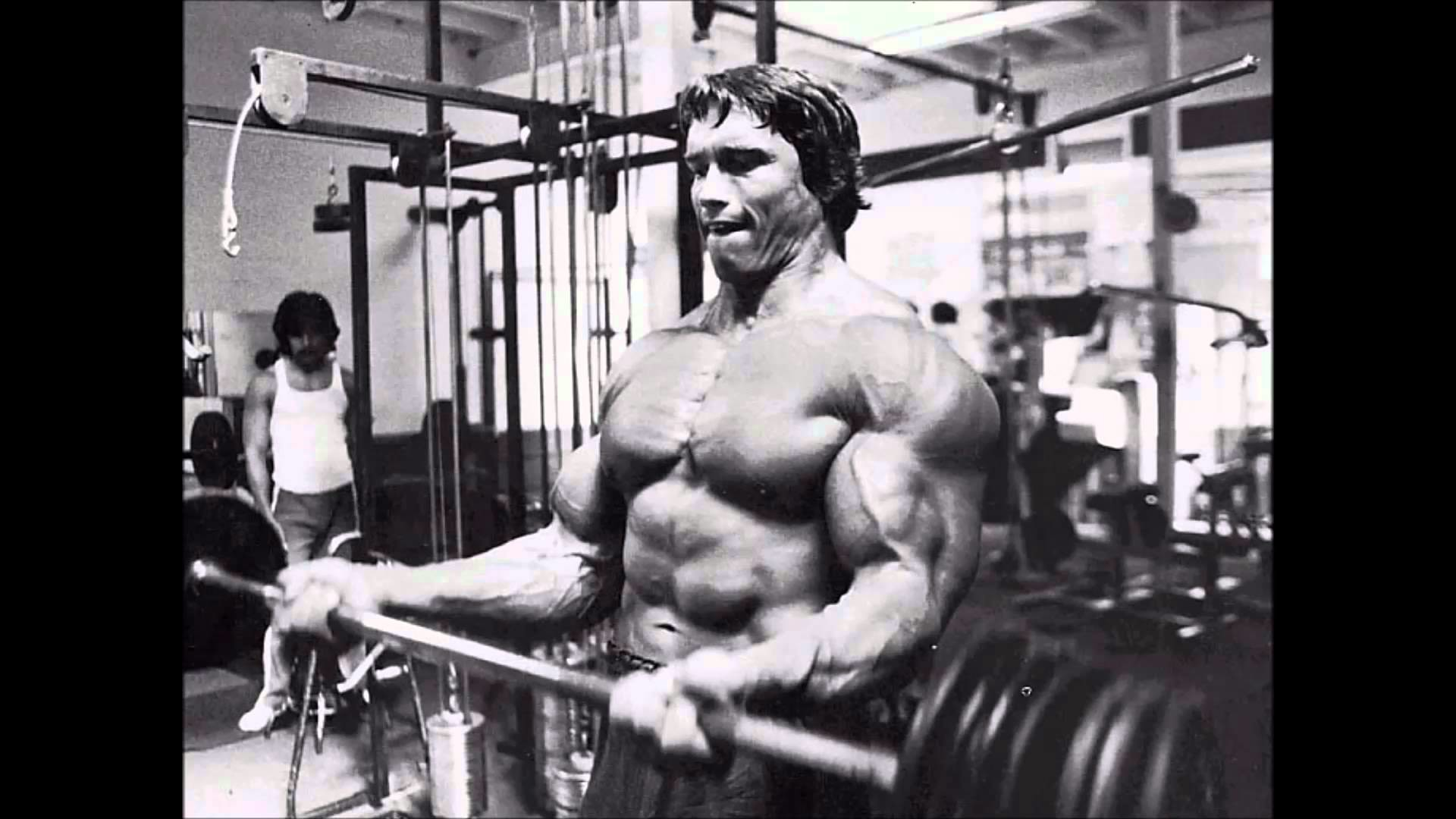 Arnold Motivational Wallpapers (79+ images)